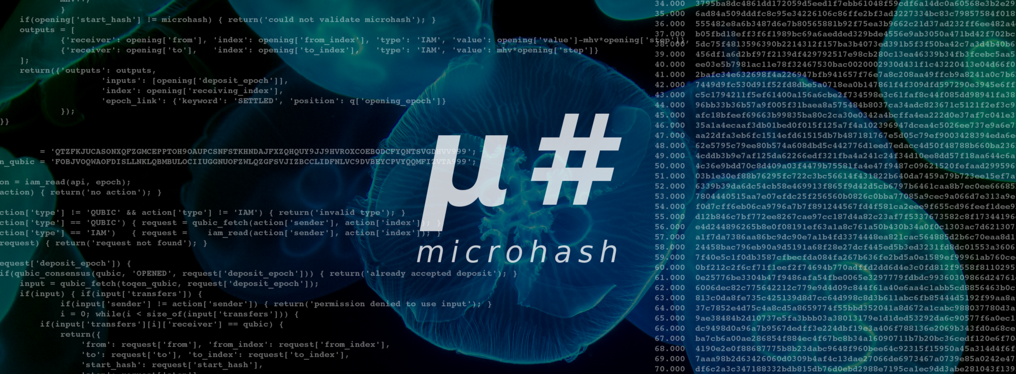 medium.com - MicroHash - First IOTA Smart Contract by Qubic Lite enables instant TOQEN Transfers via 'MicroHash Channels'