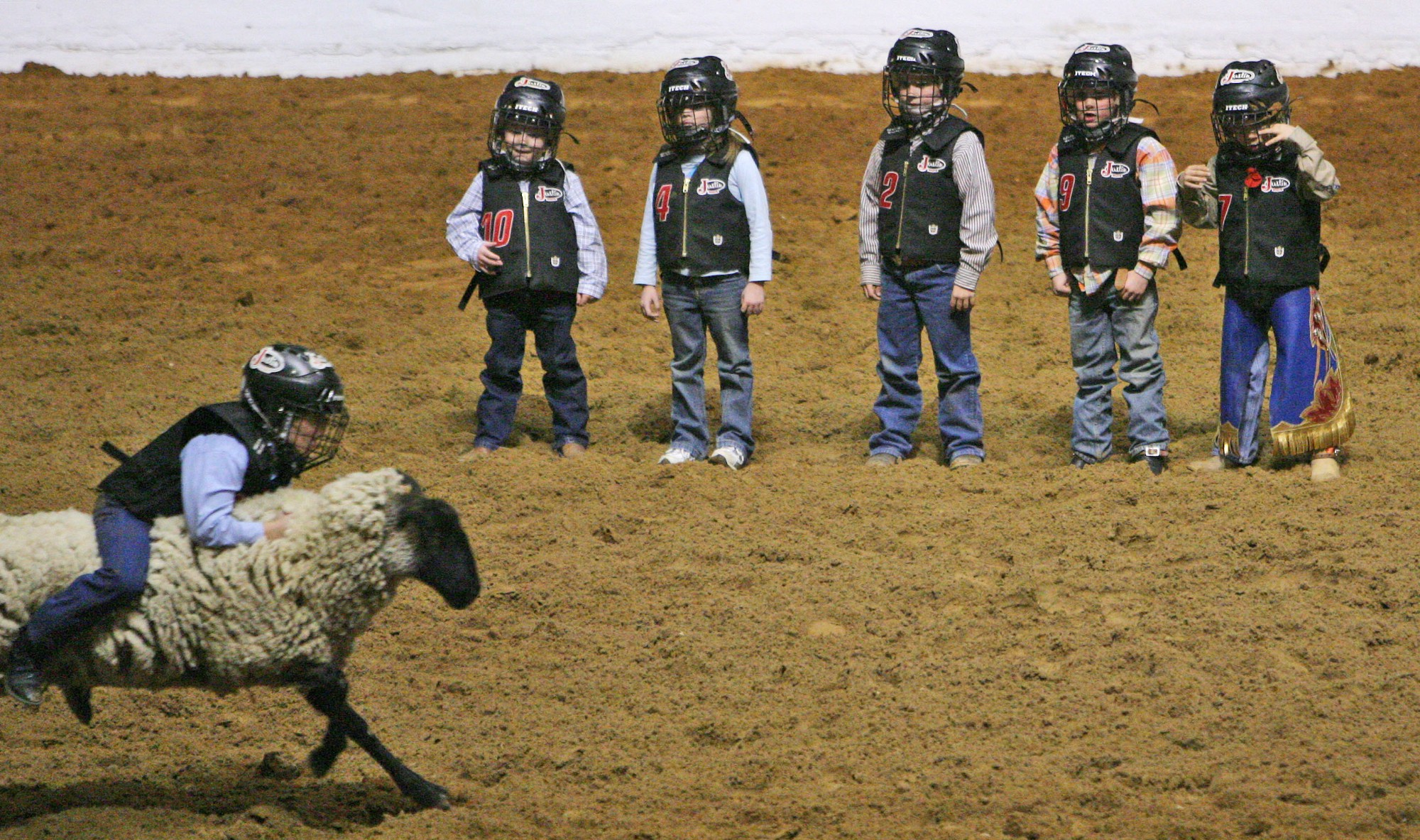 These Photos Of Terrified Toddlers Riding Angry Sheep Are