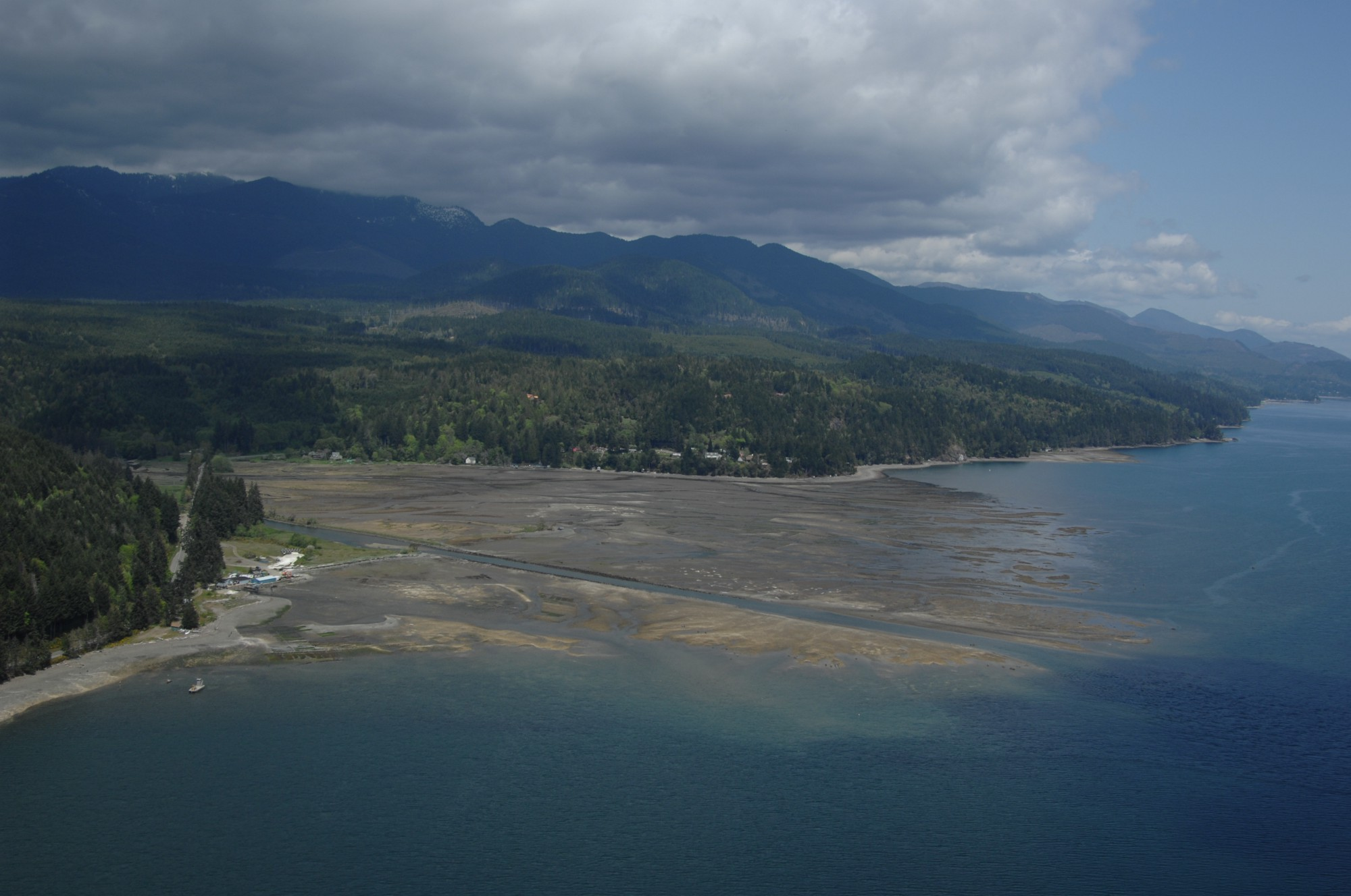 From Seed To Harvest Growing Oysters With Hama Hama In The Hood Canal