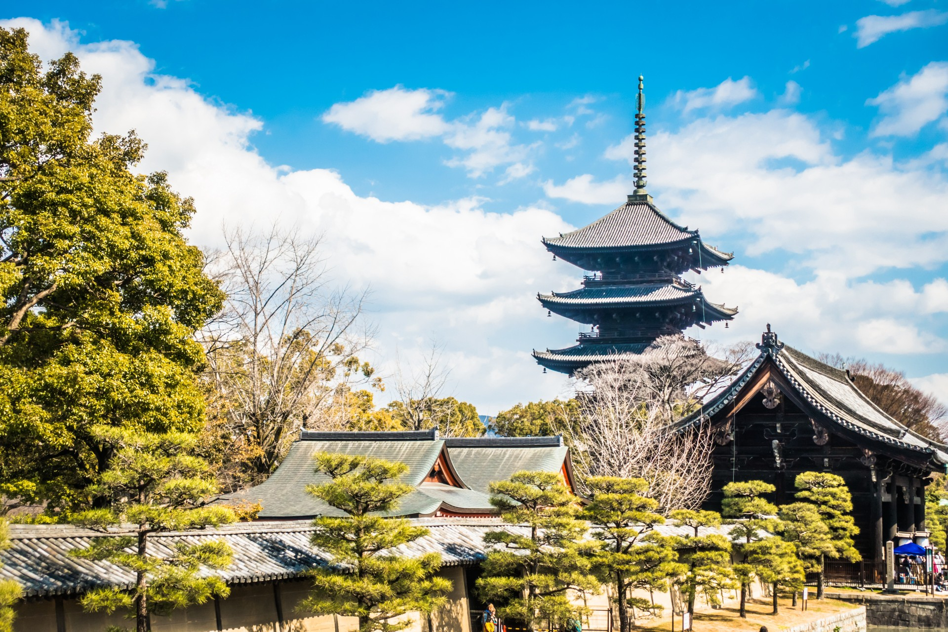 2 weeks itinerary in japan 10 unesco world heritage sites
