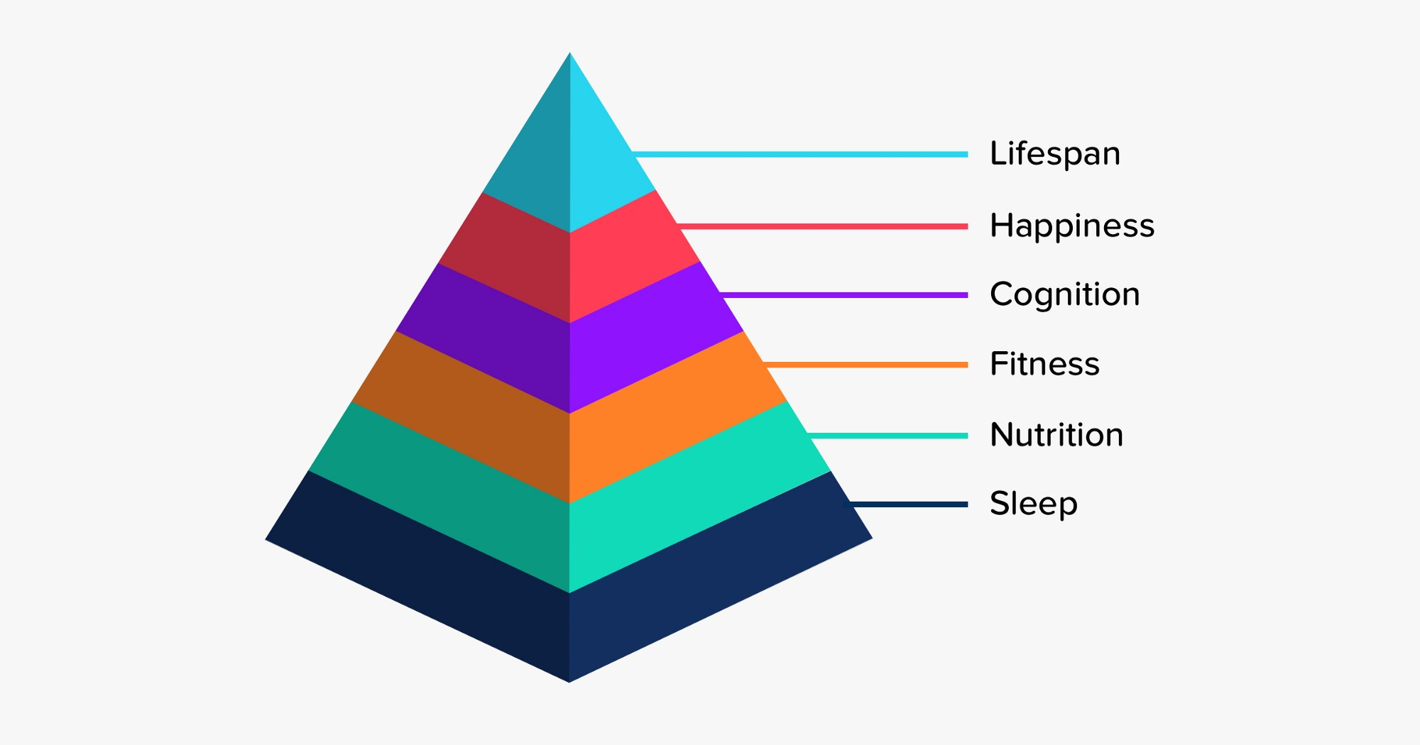 the human optimisation pyramid sleep nutrition fitness cognition happiness and longevity