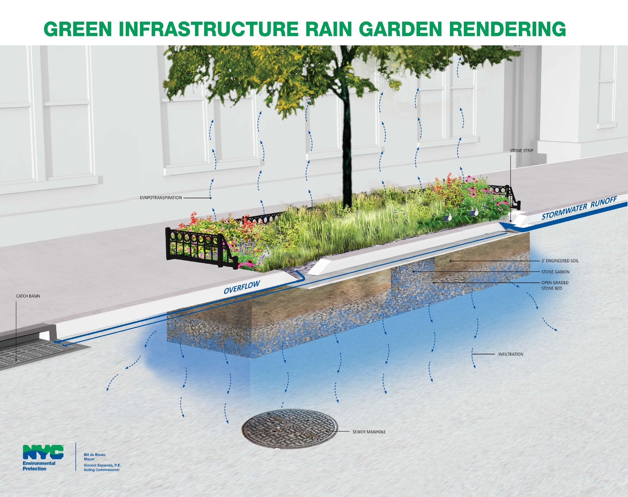 Garden Design Nyc More rain gardens to choose from nyc water medium standard rain garden design sisterspd