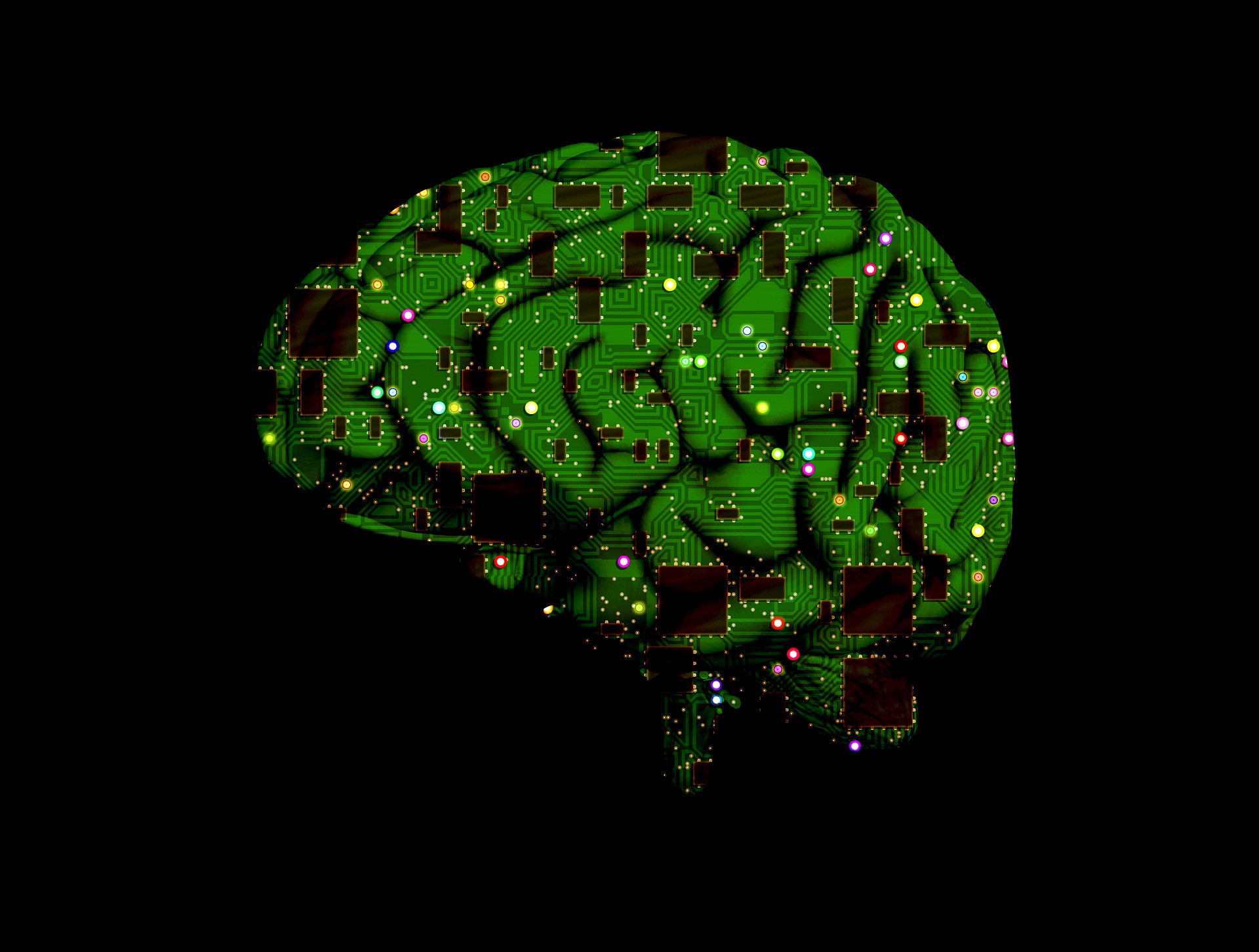 human intelligence Human intelligence is being defined and measured for the first time ever it turns out that the more variable a brain is, and the more its different parts frequently connect with each other, the higher a person's iq and creativity are.
