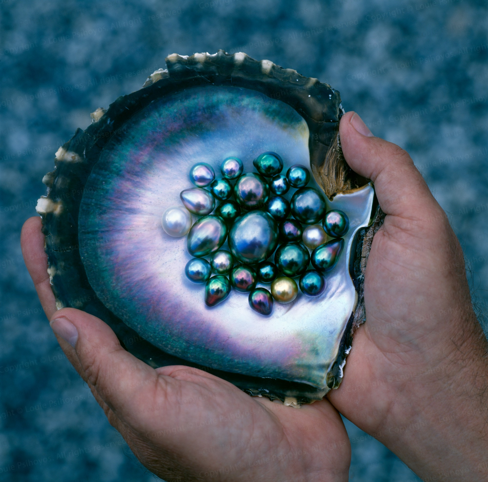 Pearl Types | The Pearl Source