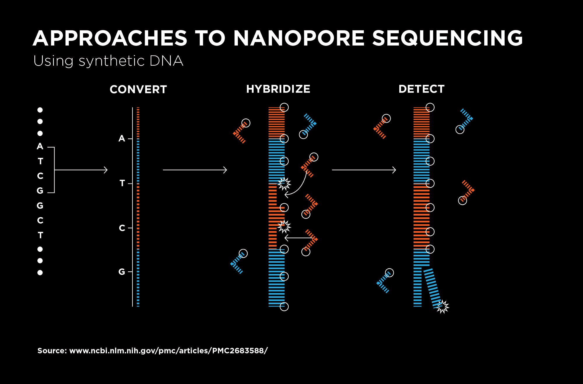 The Non Scientists Guide To Genetic Testing Endpoints A Science Wiring Instructions For Regions Bank Nanopore Sequencing Using Synthetic Dna And Optical Readout Each Nucleotide In Target That Is Be Sequenced First Converted Into Longer