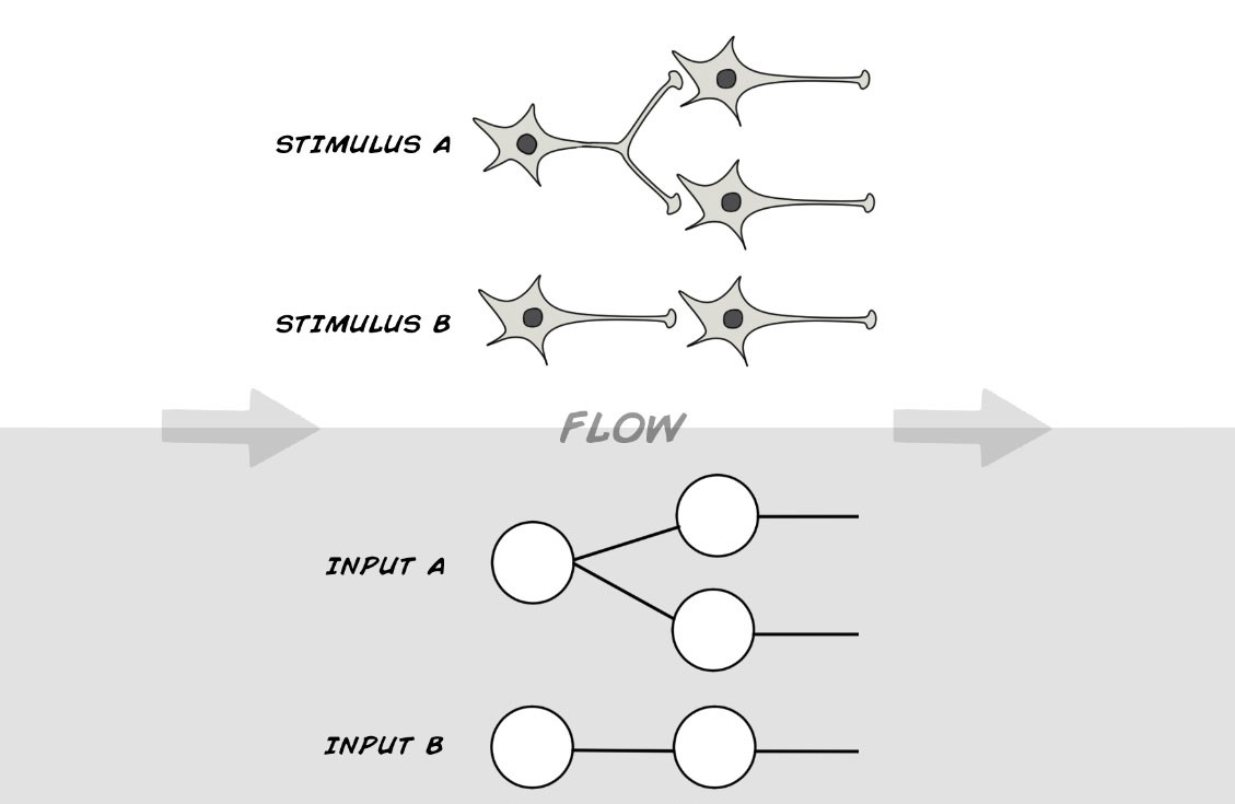 Making a simple neural network classification becoming human in such arrangement stimulus a and b share no information and remain independent so there is no way for upstream neurons to compare and classify them ccuart Gallery