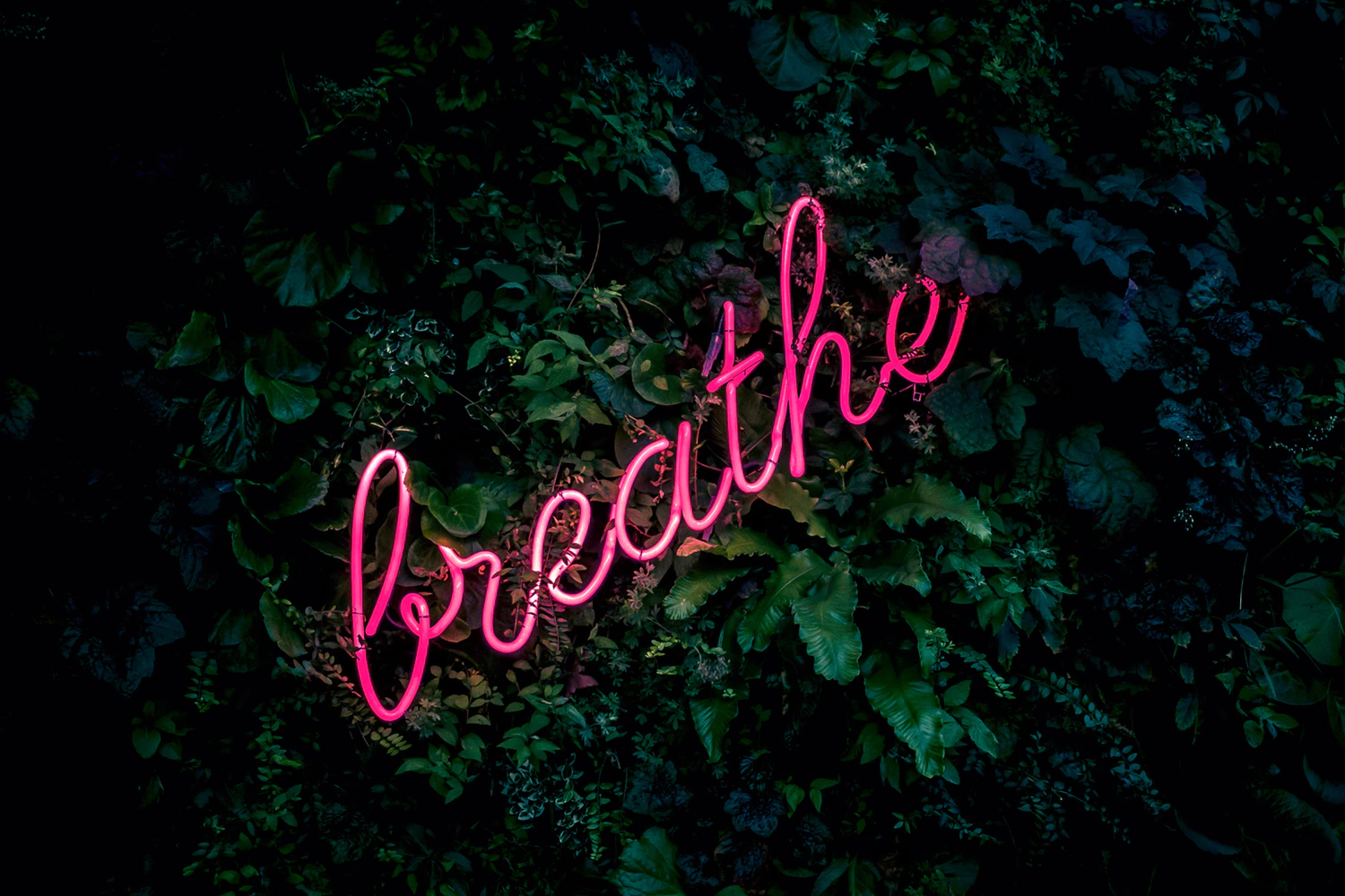 The Power of Taking Deep Breaths