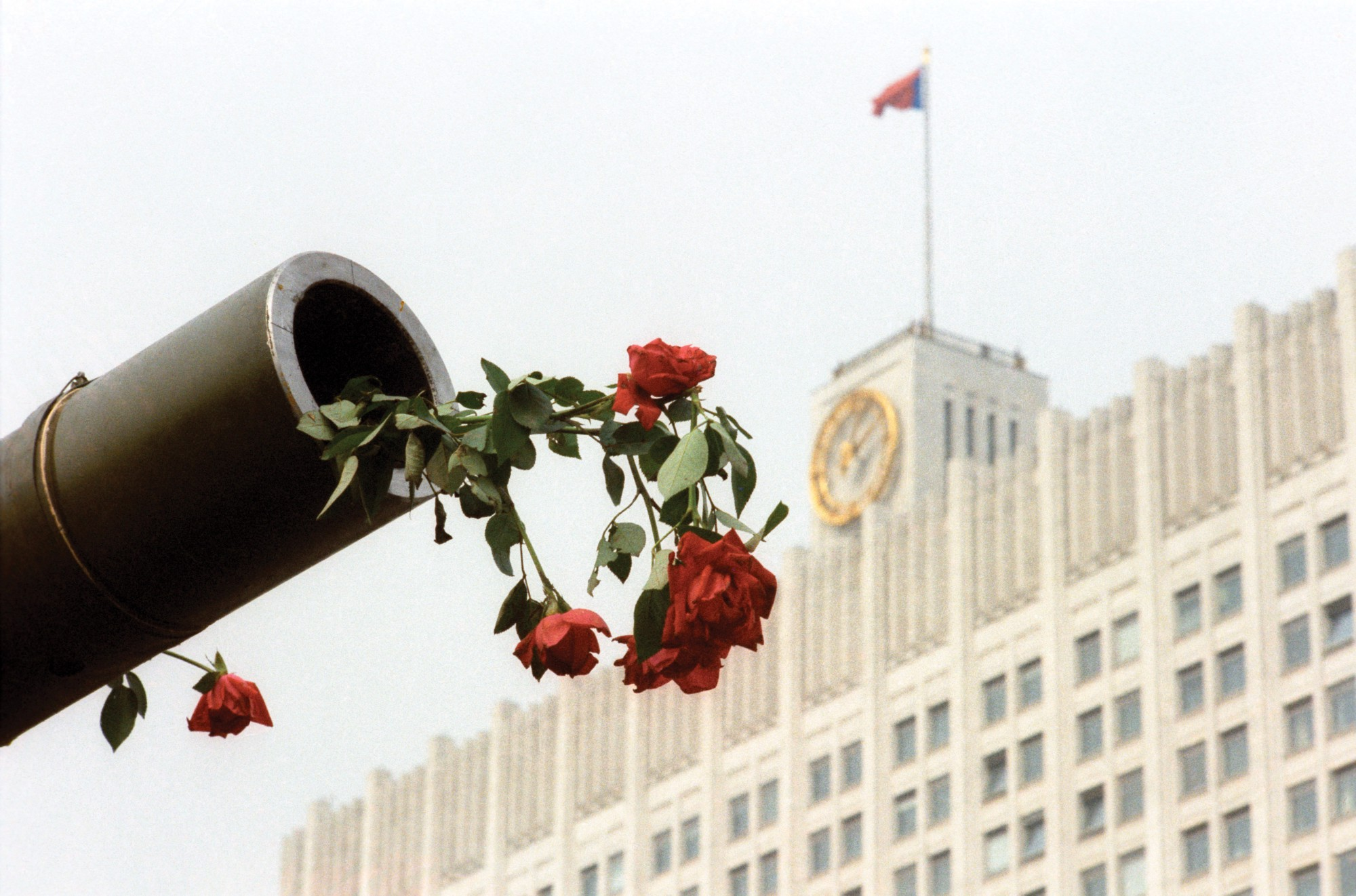 Tank gun with rose