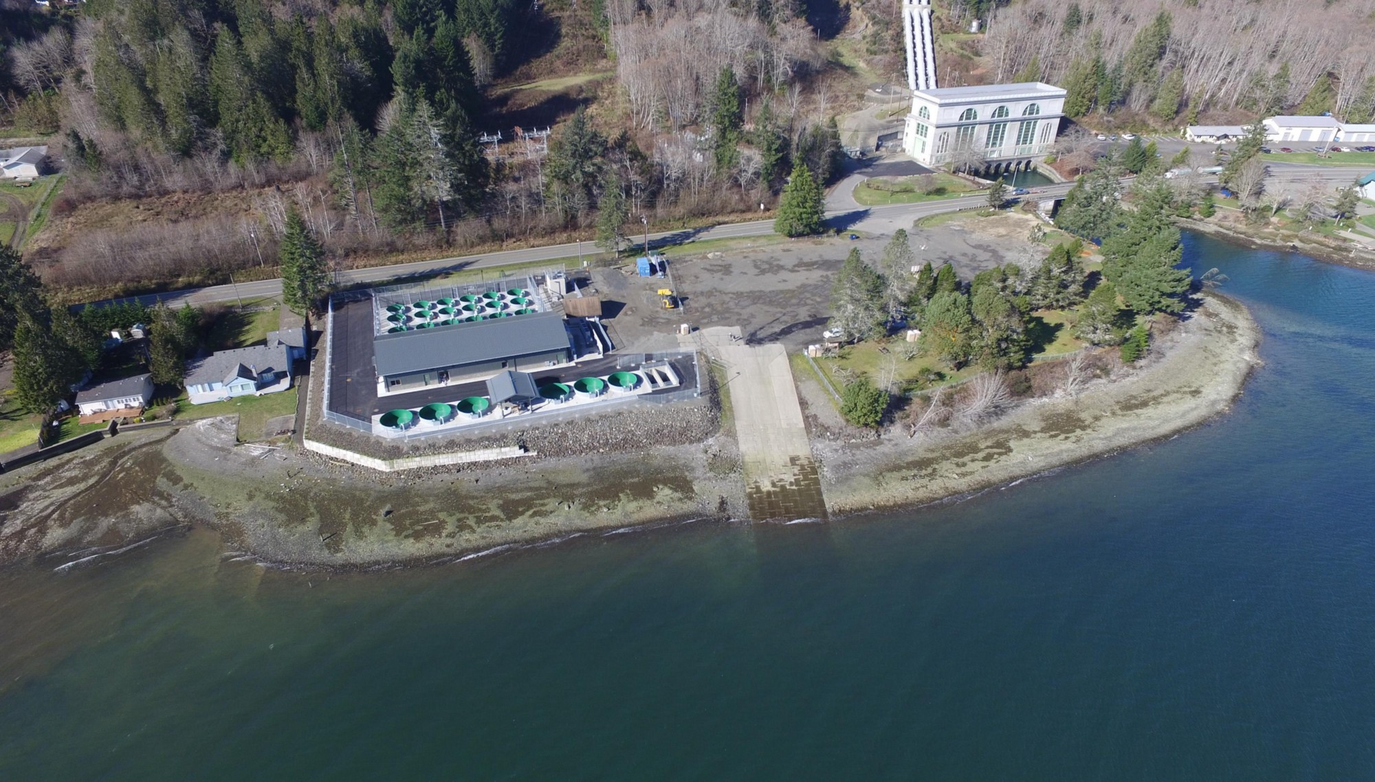 Tacoma Power Spawns First Utility-Owned Fish Hatcheries in ...