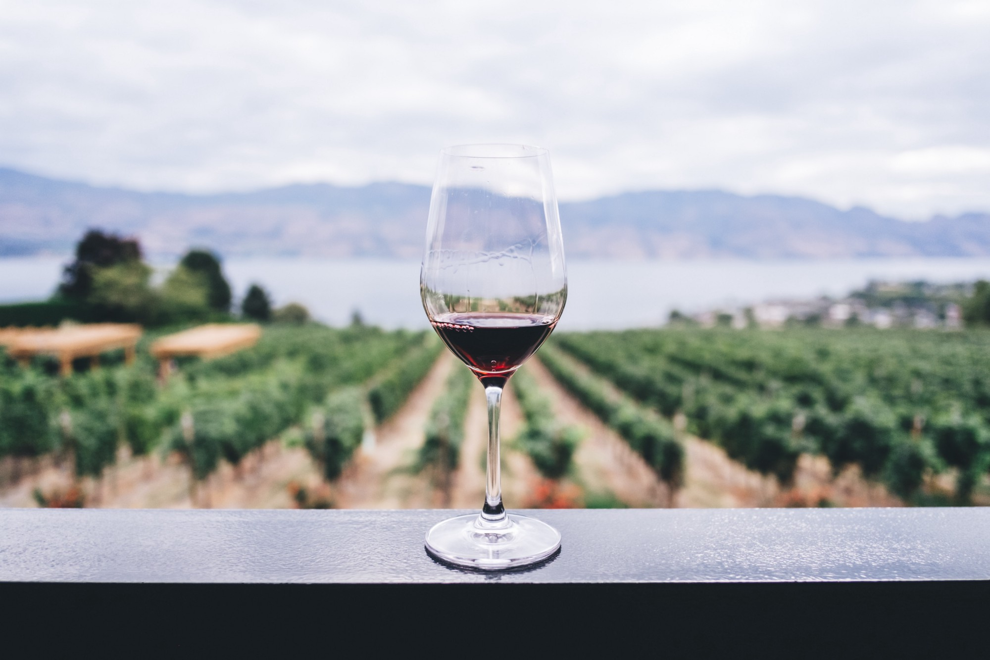 circumstances influence your experience of food and wine