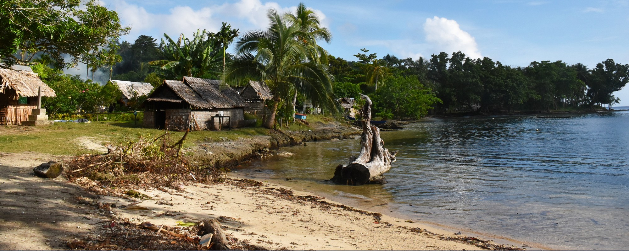 surviving the 2007 tsunami in the solomon islands durie