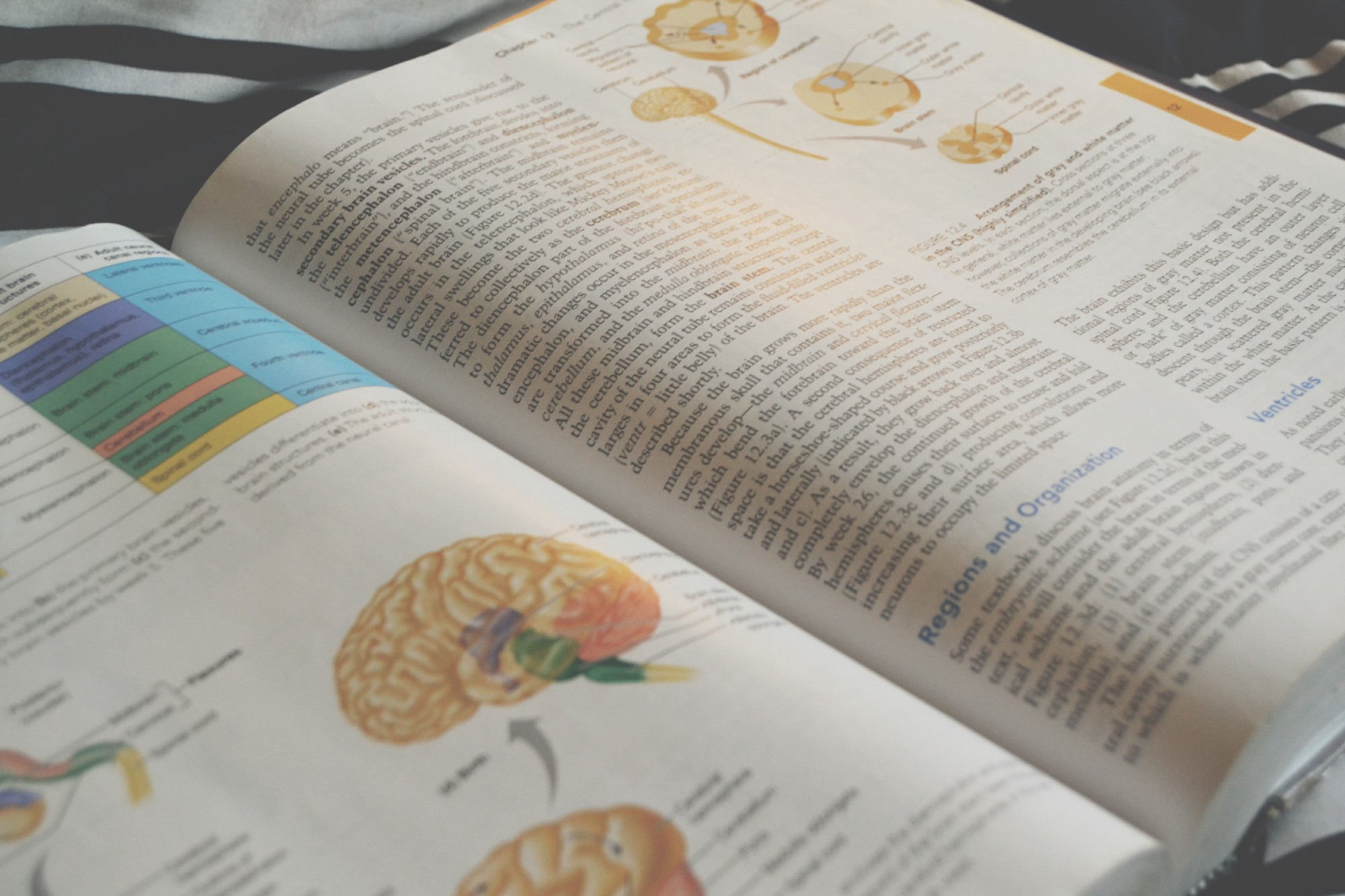 How To Highlight Your Biology Textbook – The Higher Education Revolution
