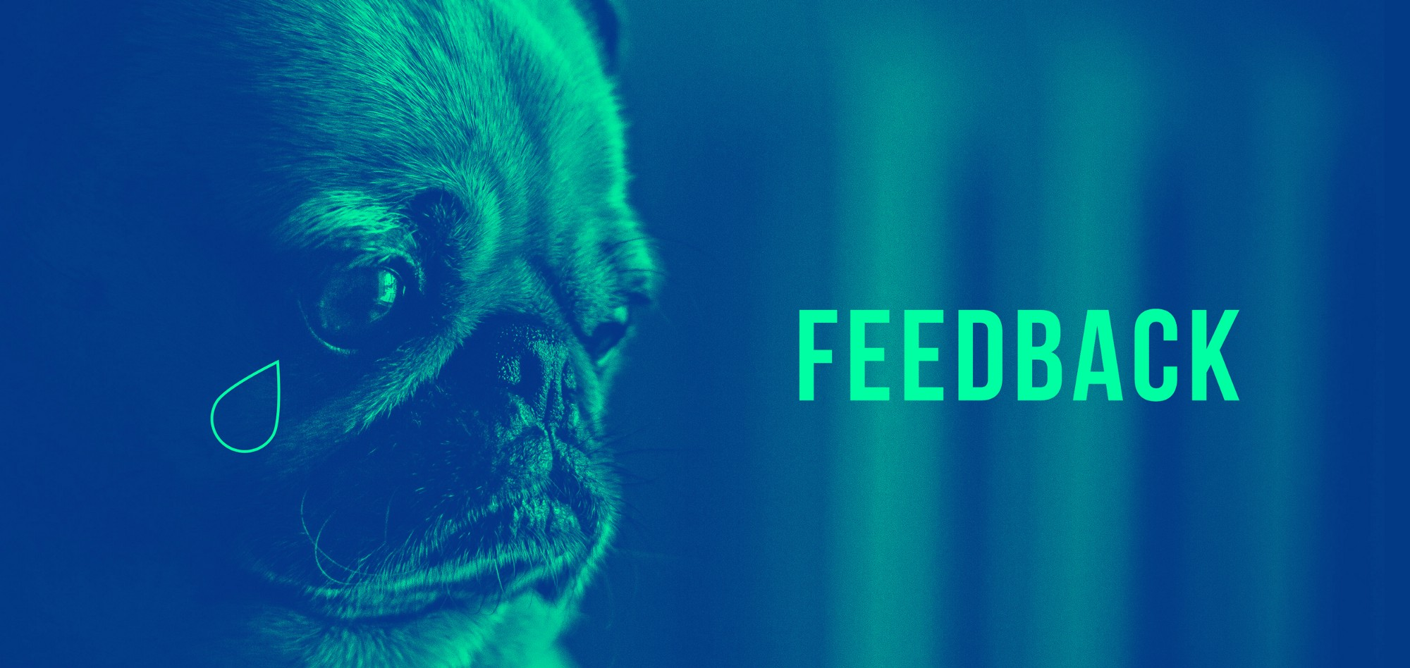 finding the positive in negative feedback dear design student
