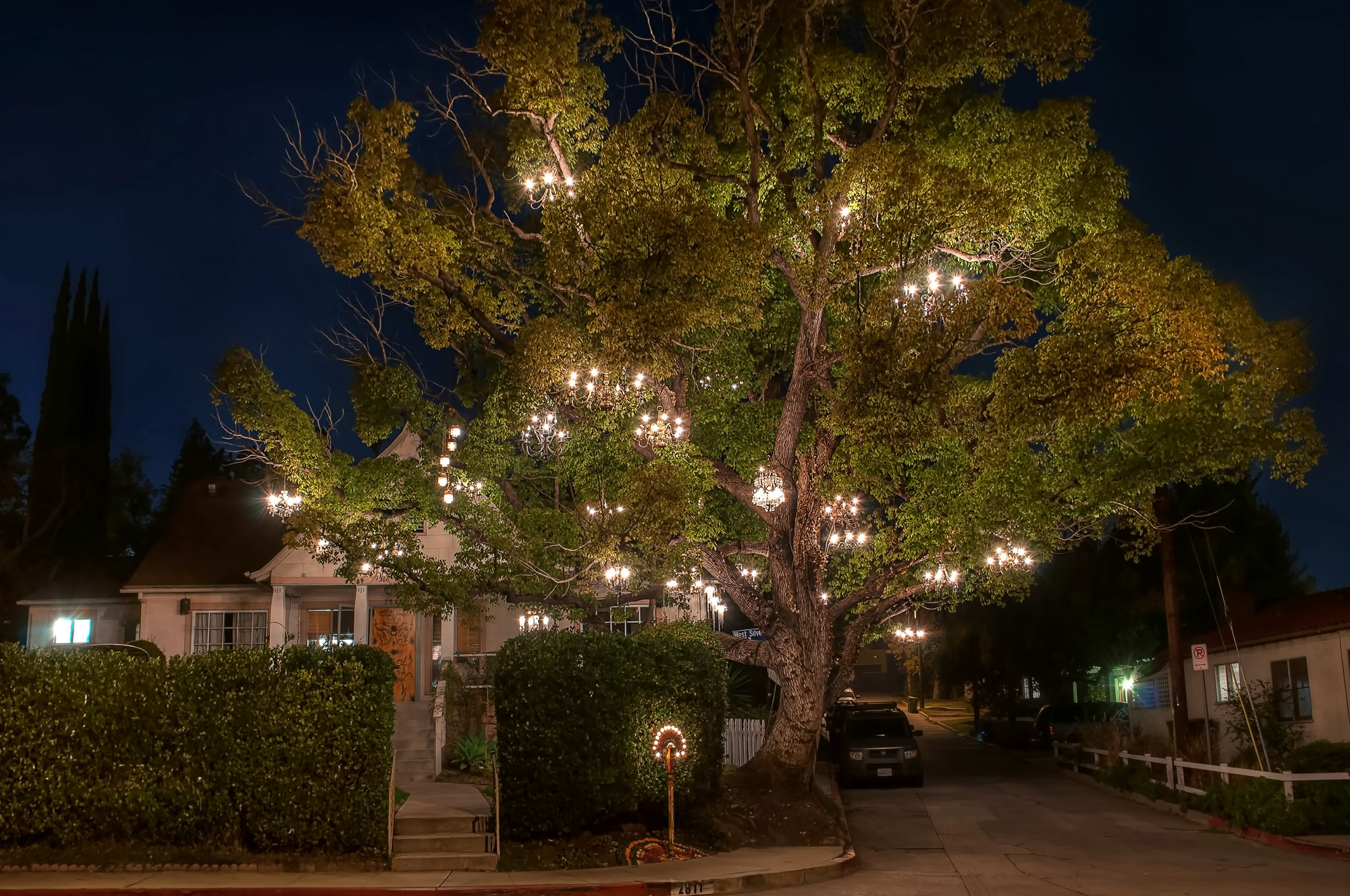 The chandelier tree is a beacon for romance in los angeles aloadofball Images