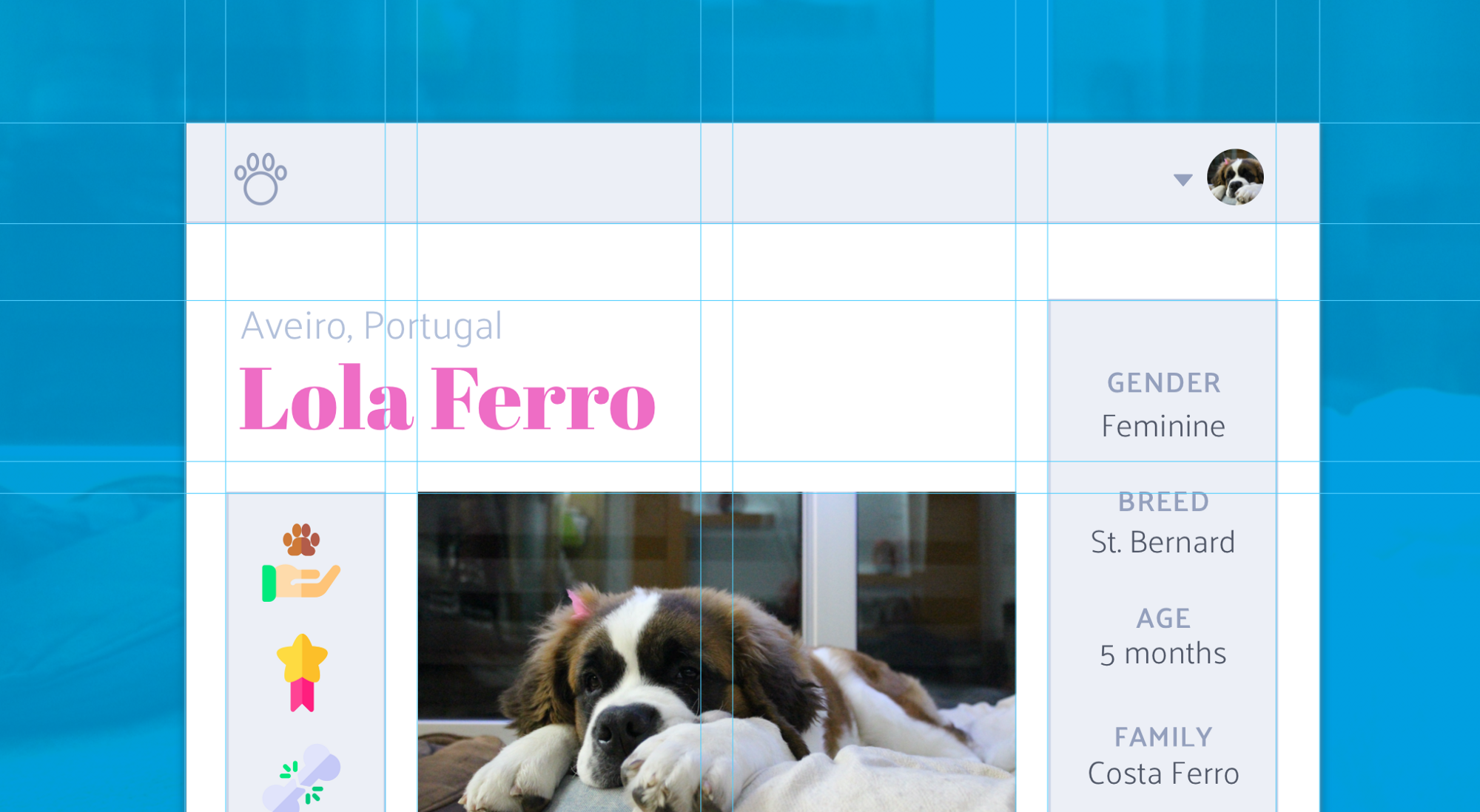 Css Grid Layout Crossed Sections Deemaze Writing Wall Medium