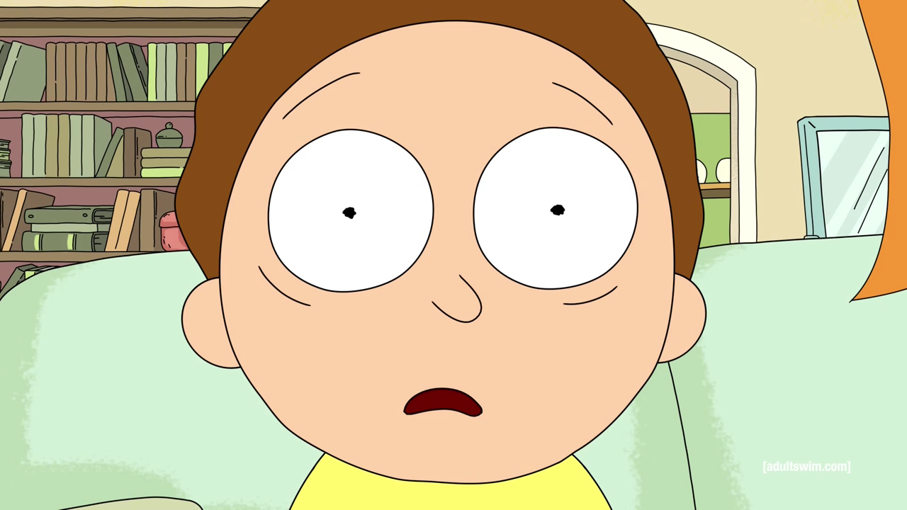 morty is mixed just like me and that s complicated