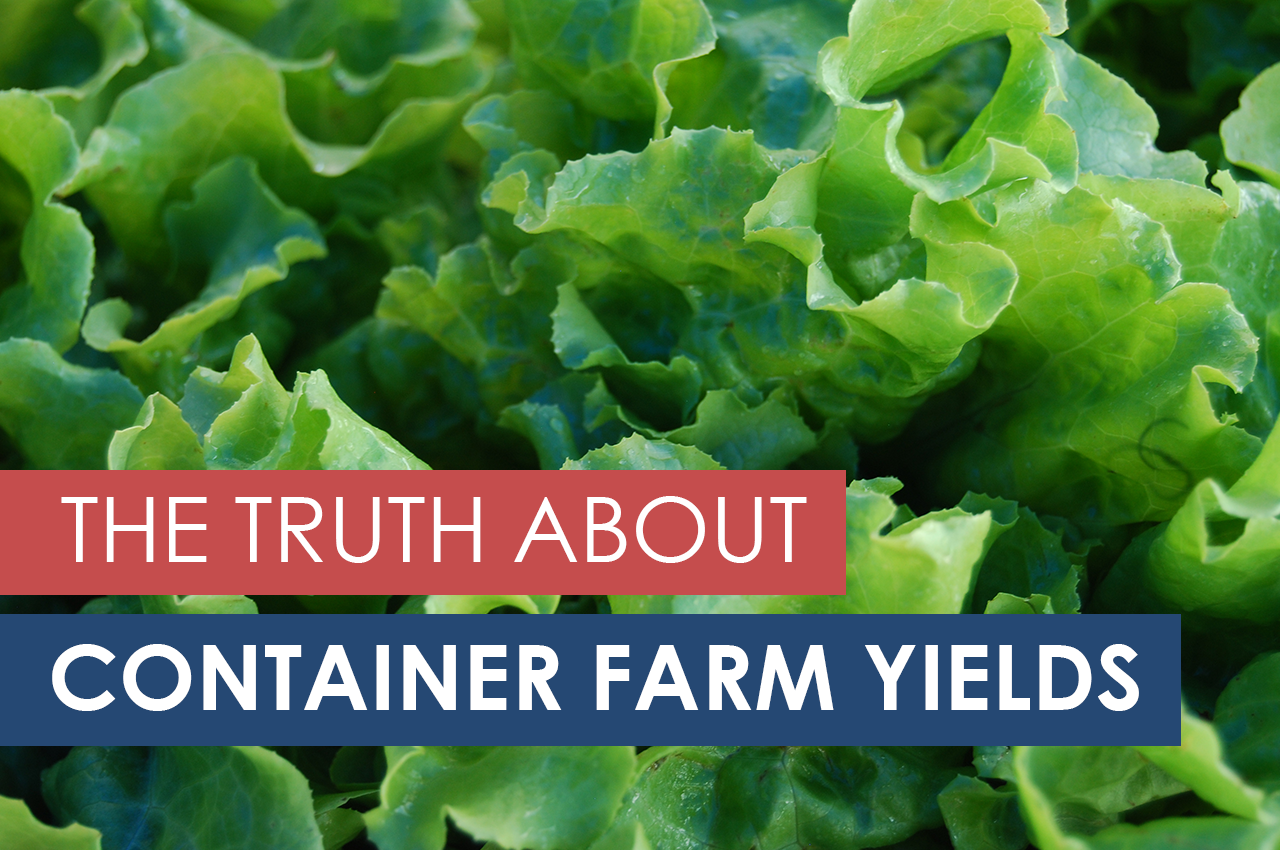 How Much Can Container Farms Really Grow?