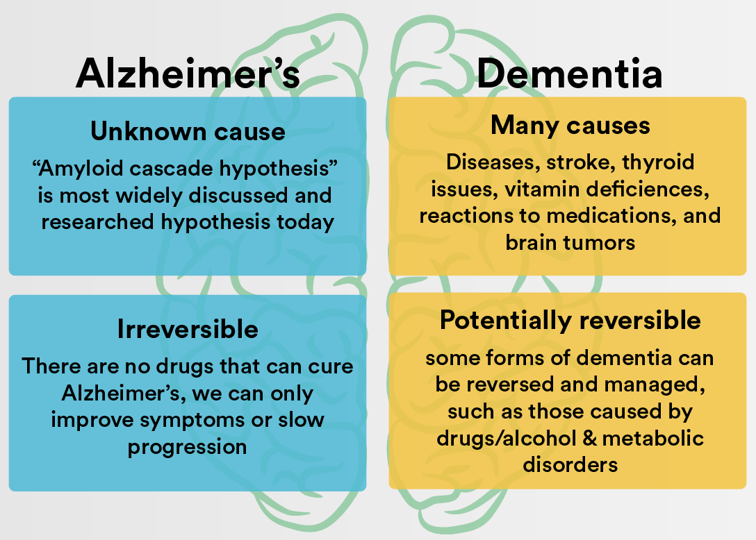 An analysis of the alzheimers disease its causes and treatments