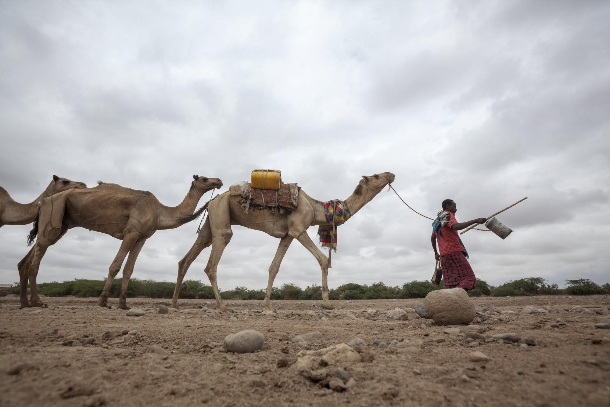 Ethiopia Is In The Grip Of Its Worst Drought Recent History With Water Supply East African Country At Lowest Point Years