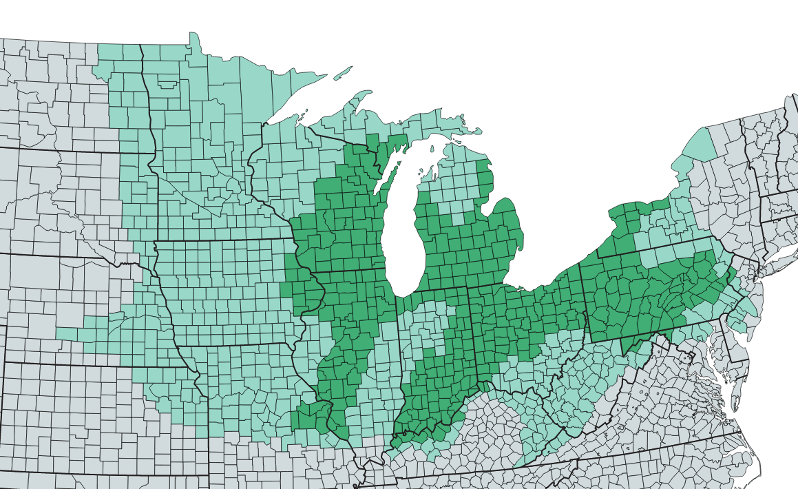 state of michigan map with counties with Where Is The Rust Belt D1dd280cf8a8 on Where Is Lafayette in addition 0 4561 7 135 3306 71085 3331 322972  00 likewise Government Relations Sourcebook likewise Midland  Michigan in addition Where Is Key West.