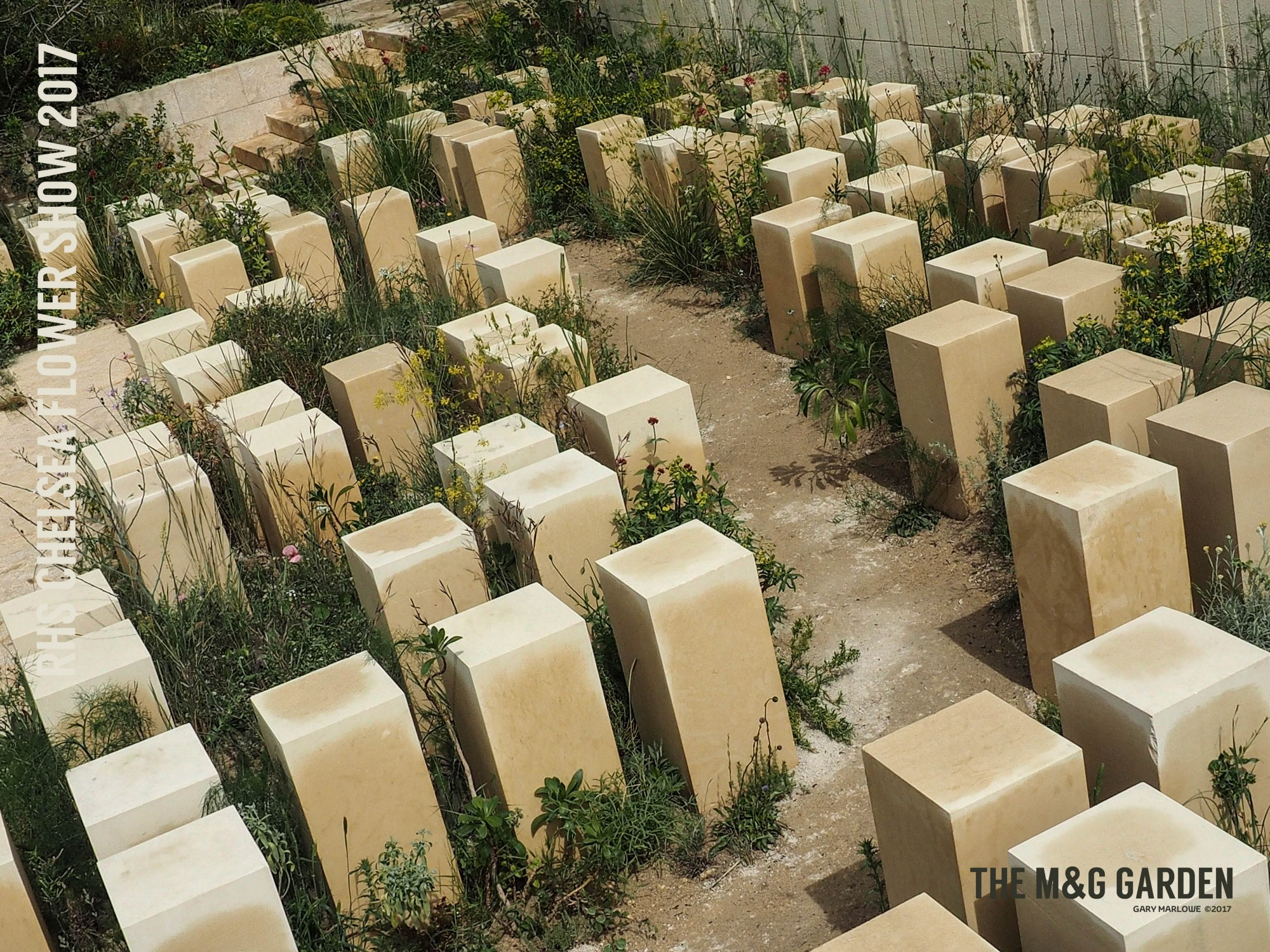 shot! the m&g garden at the 2017 rhs chelsea flower show