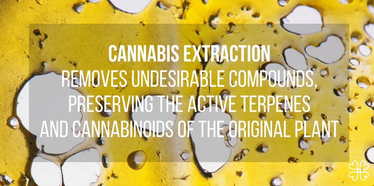 Cannabis Extractions The Complete Guide Welcome To Harmony Medium
