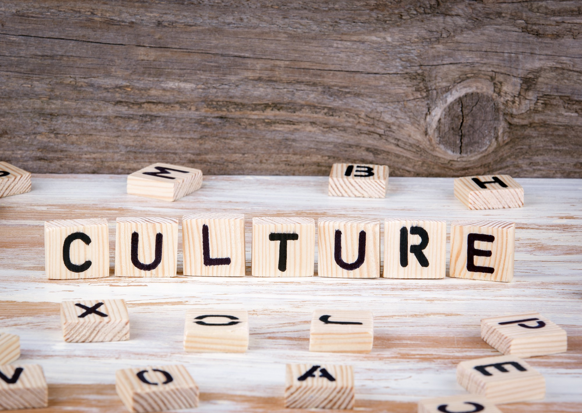 A Step By Step Guide To Building A Thriving Organizational Culture