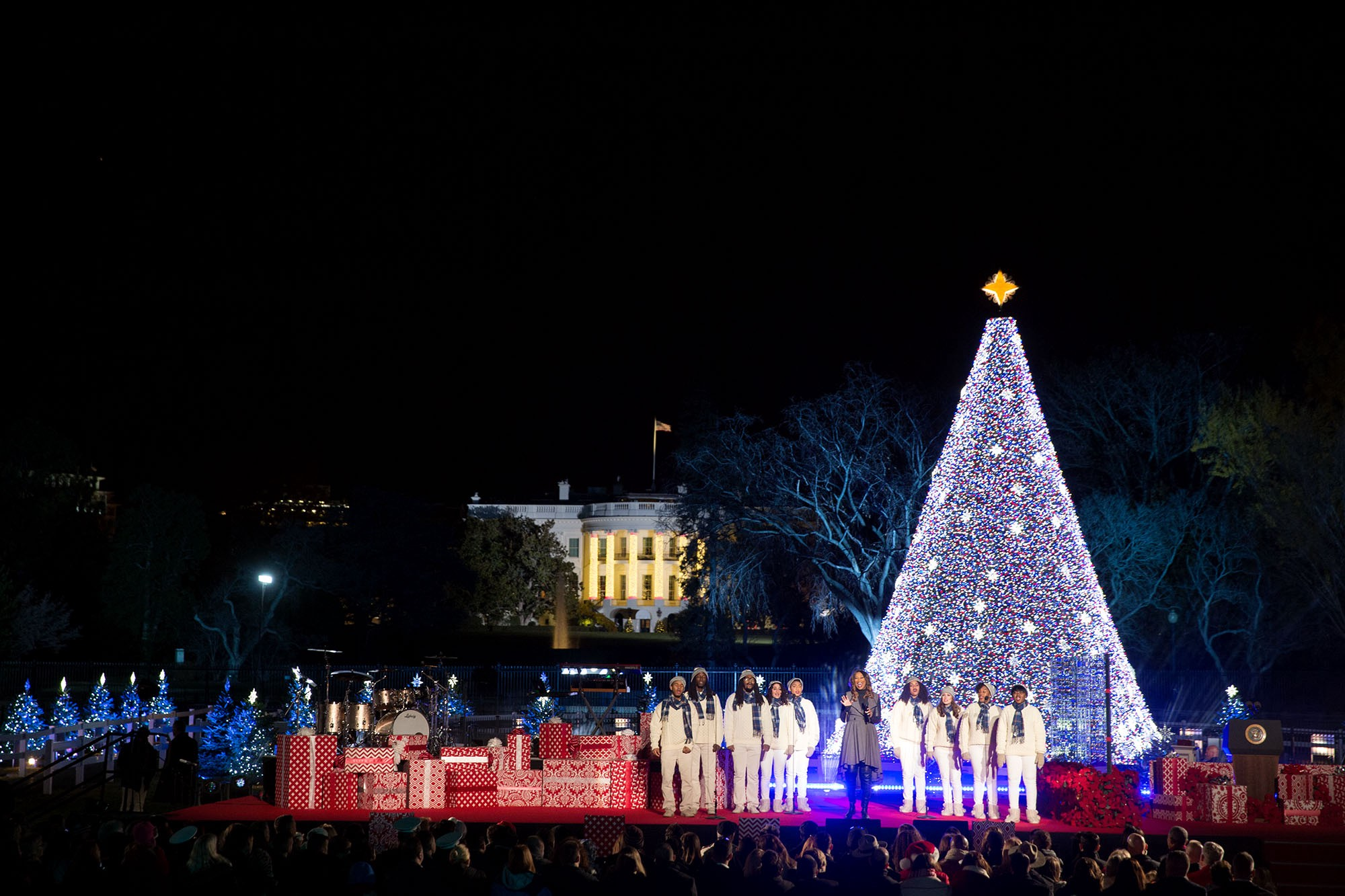 yolanda adams performs during the national christmas tree lighting on the ellipse in washington dc dec 1 2016 official white house photo by lawrence