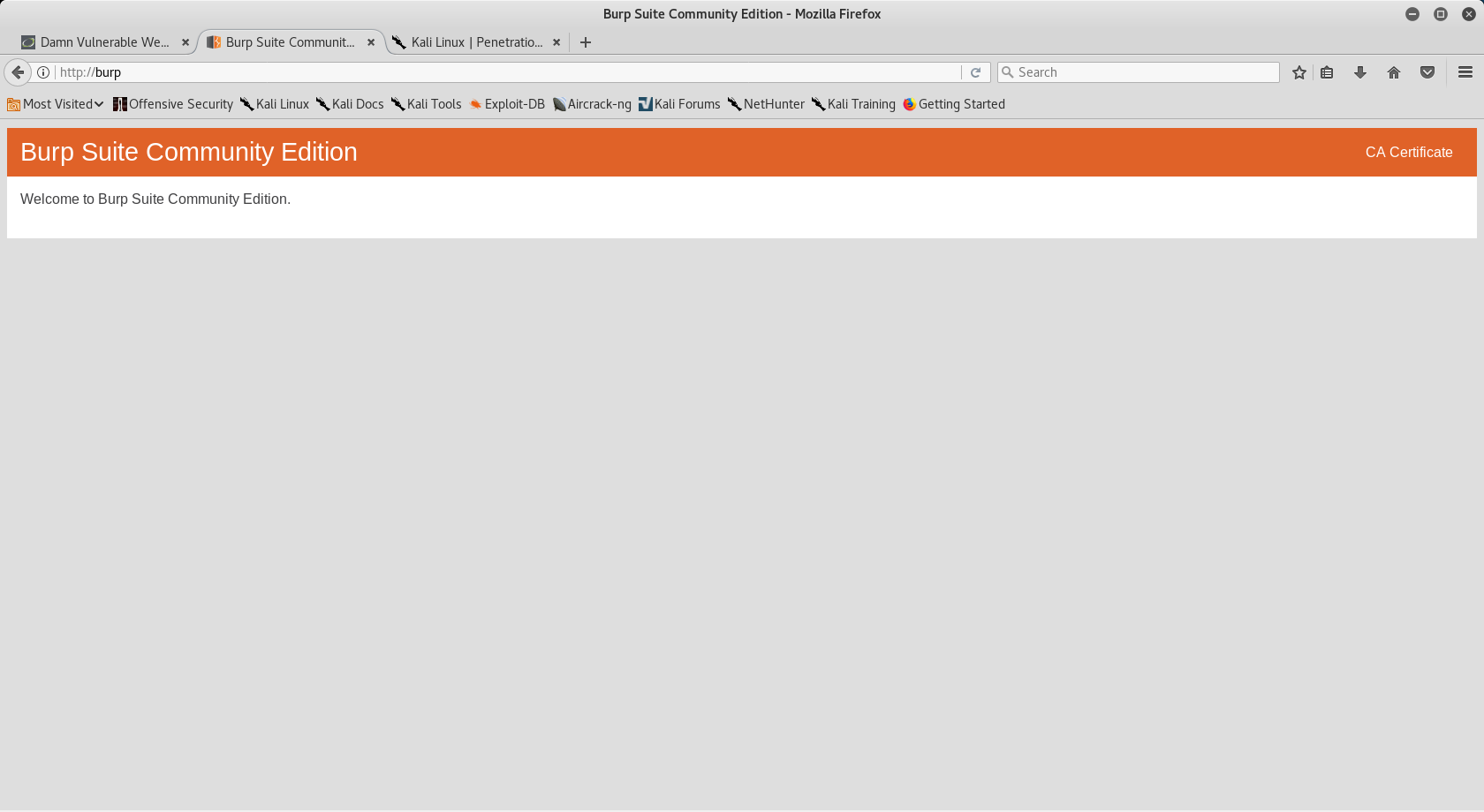 Burp Suite Webpage Enumeration And Vulnerability Testing
