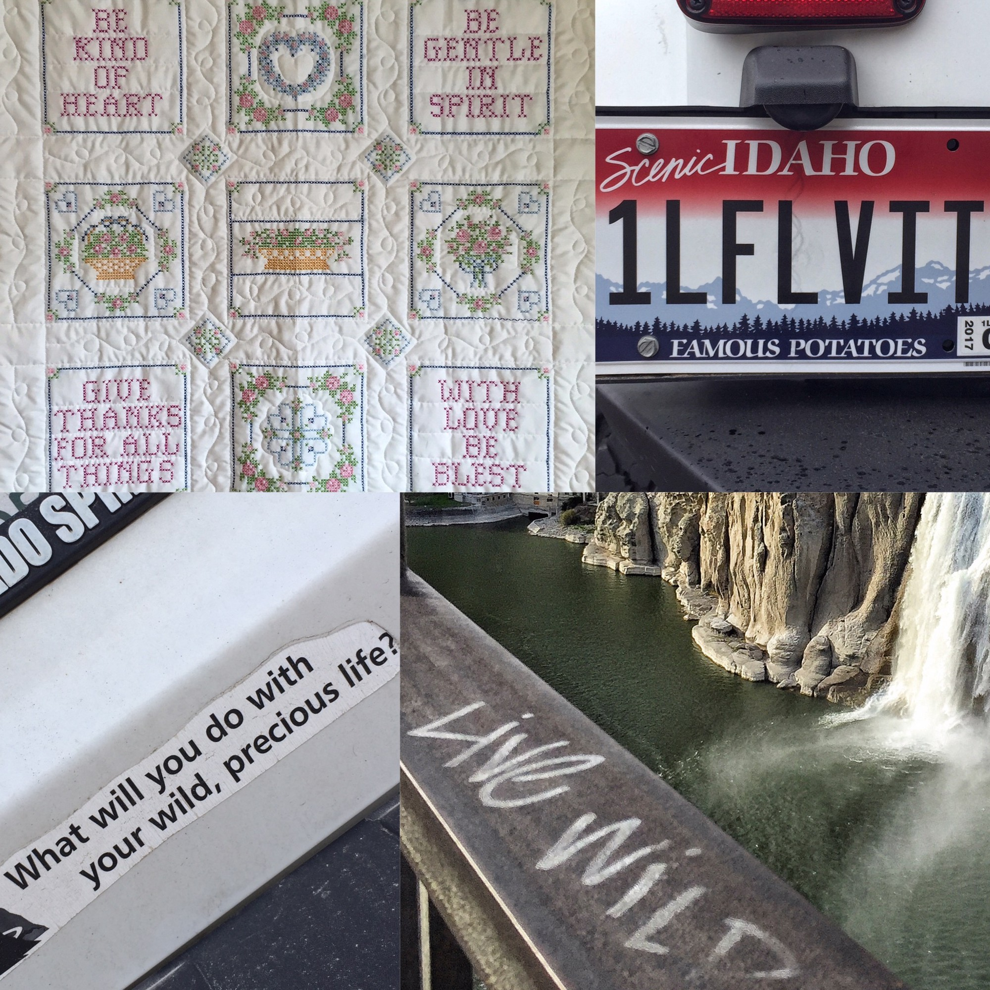 The jehovahs witness who knew too much the bigger picture medium clockwise from top left wall art from brown sugar roasters in riverton wy a license plate i spotted in jackson hole wy a bumper sticker and graffito fandeluxe Images