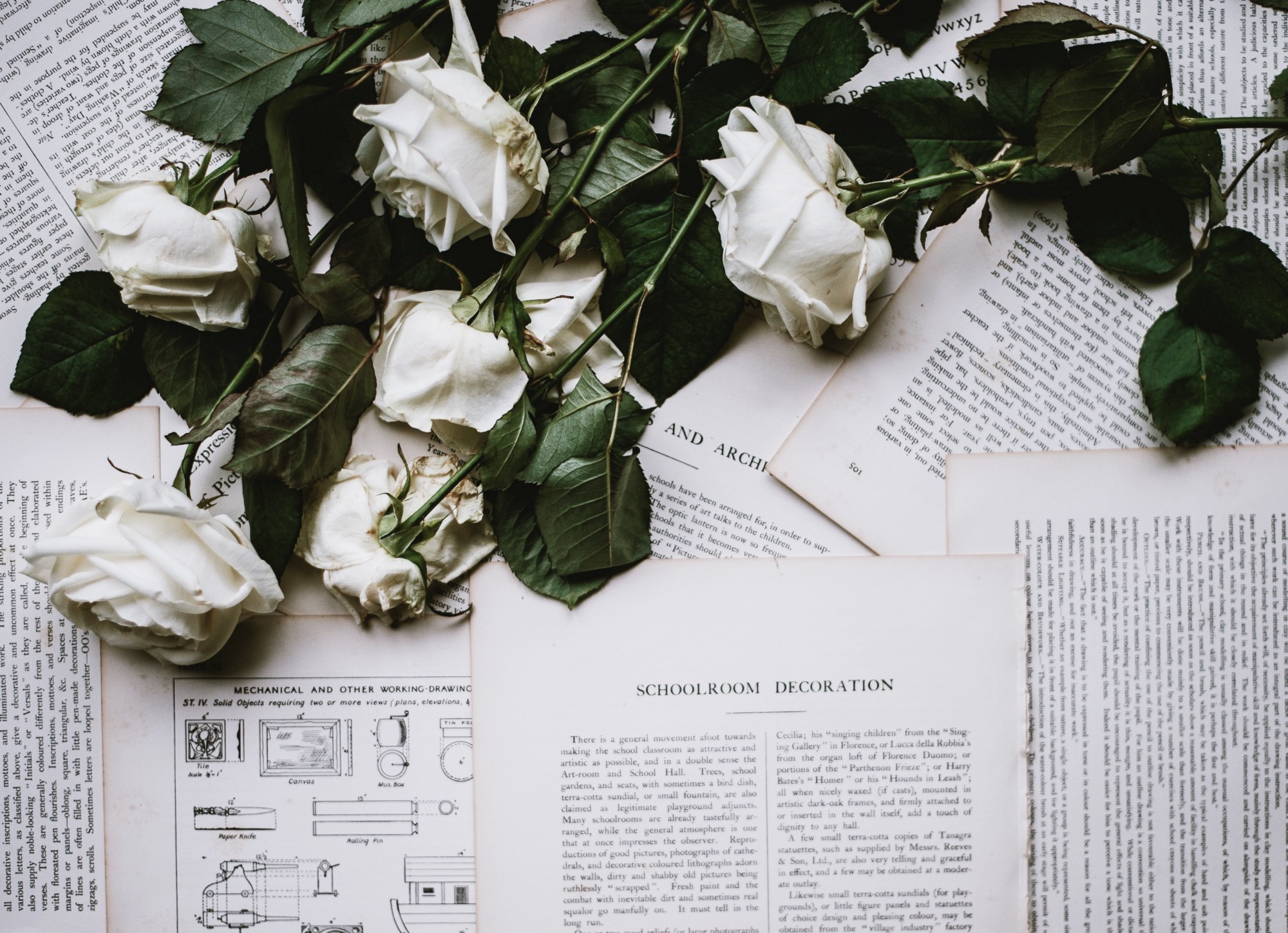 How To Stop Worrying And Love The Process Of Writing