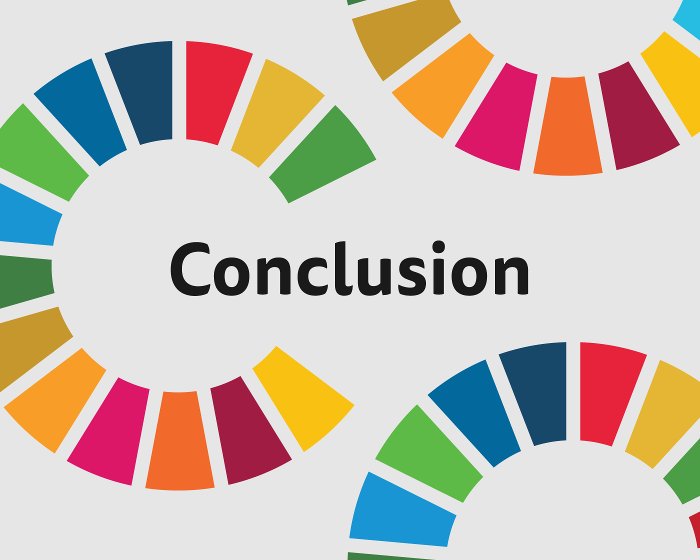 conclusion and other sdsn resources sdg guide