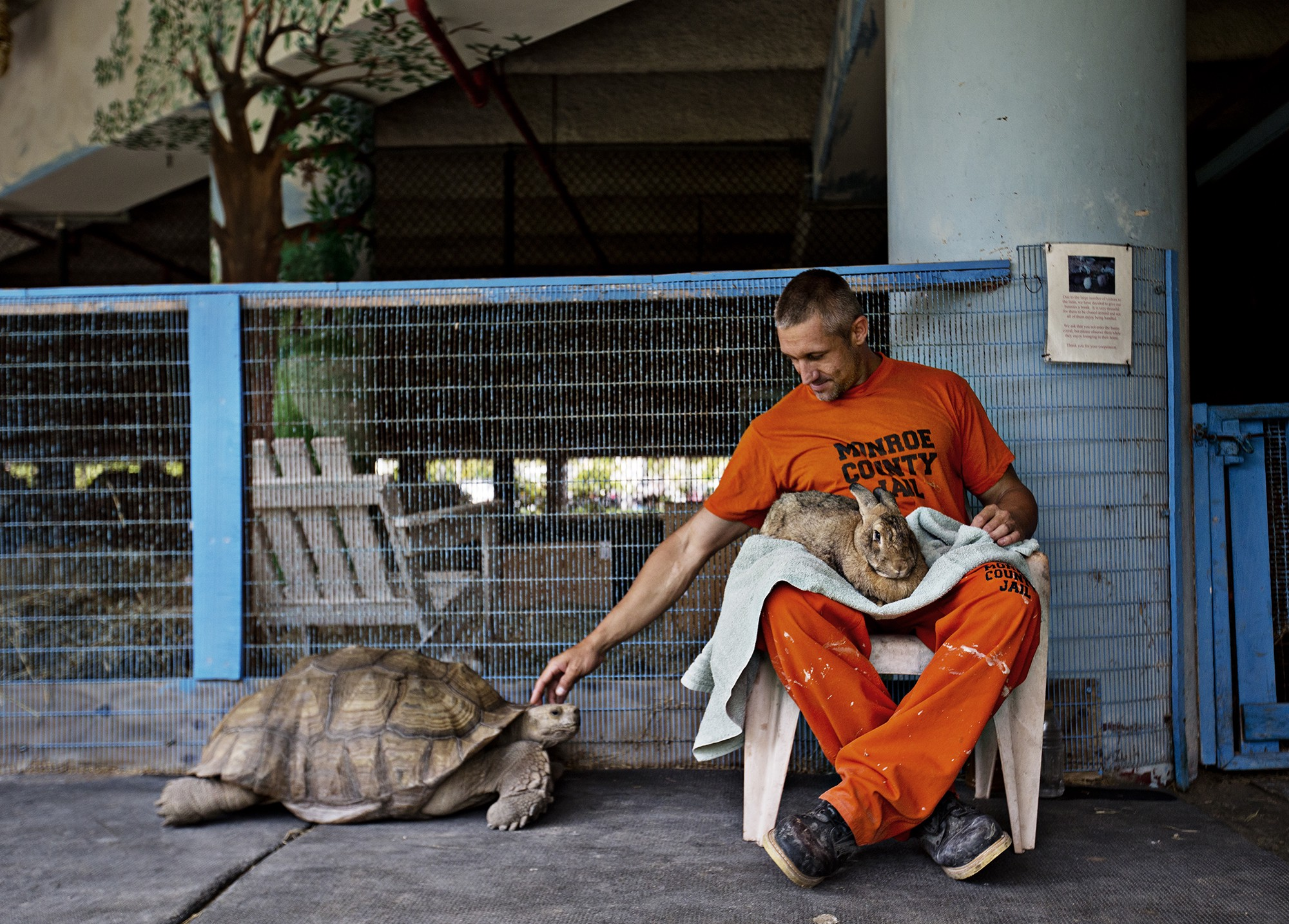 In Photos The Florida Jail That Doubles As An Exotic