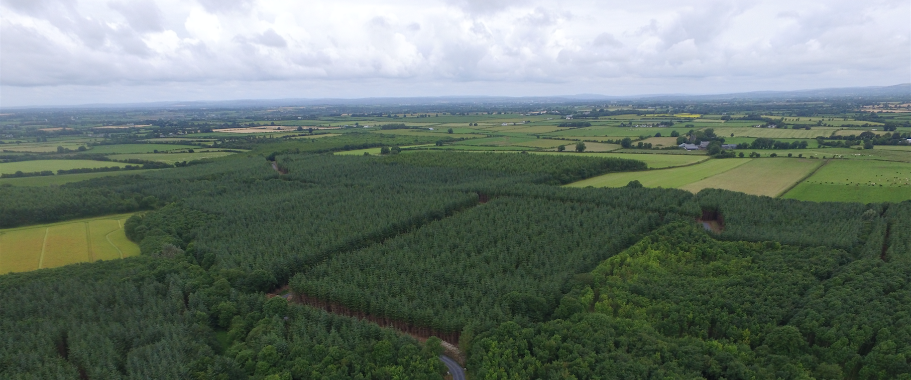 Drone Mapping Saves 150 000 In Purchase Of Private Forestry