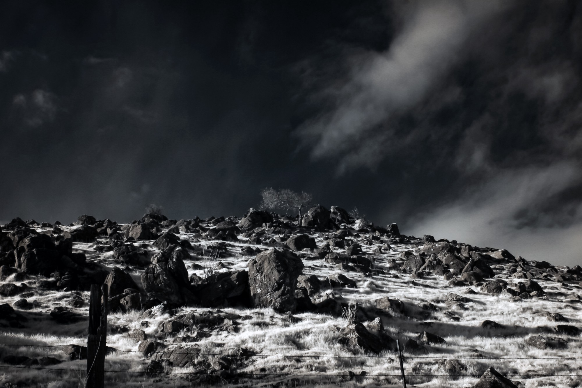 photo essay shooting digital infrared in winter light