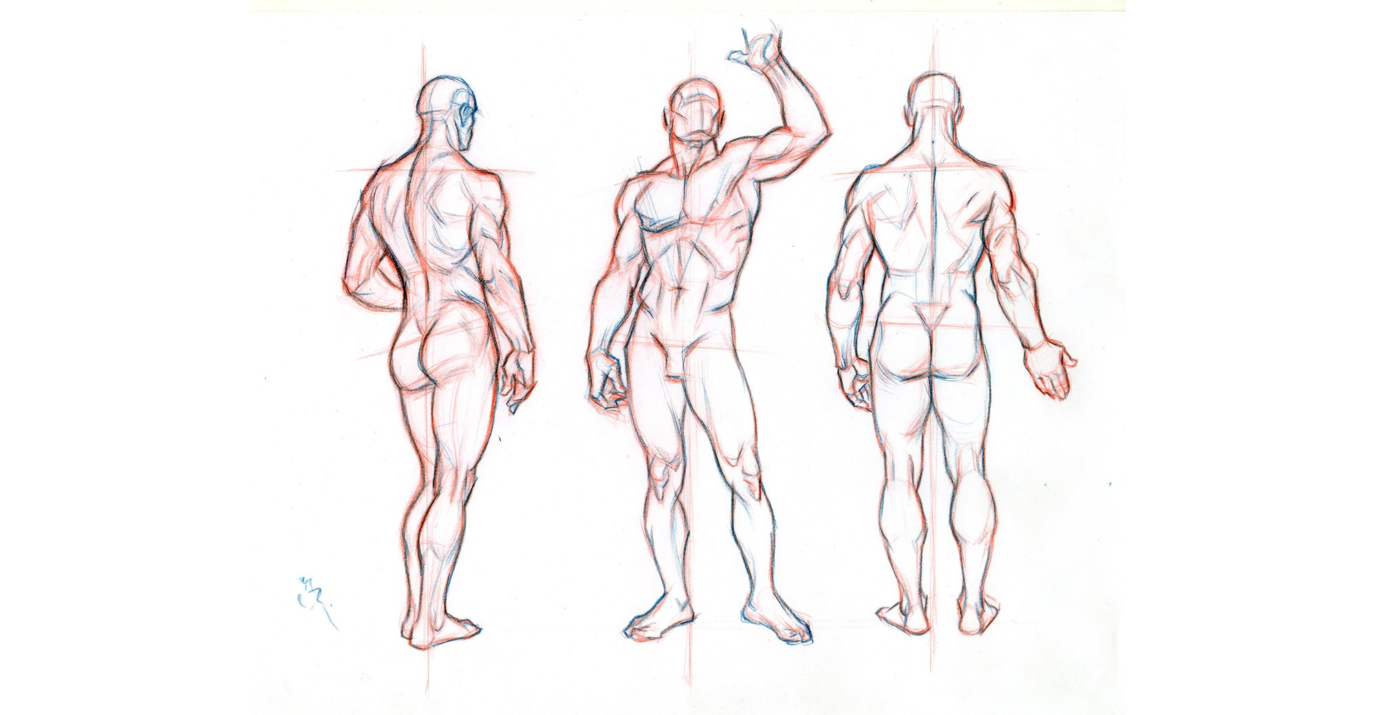 Beginners guide importance of proper body proportions and how to get them right