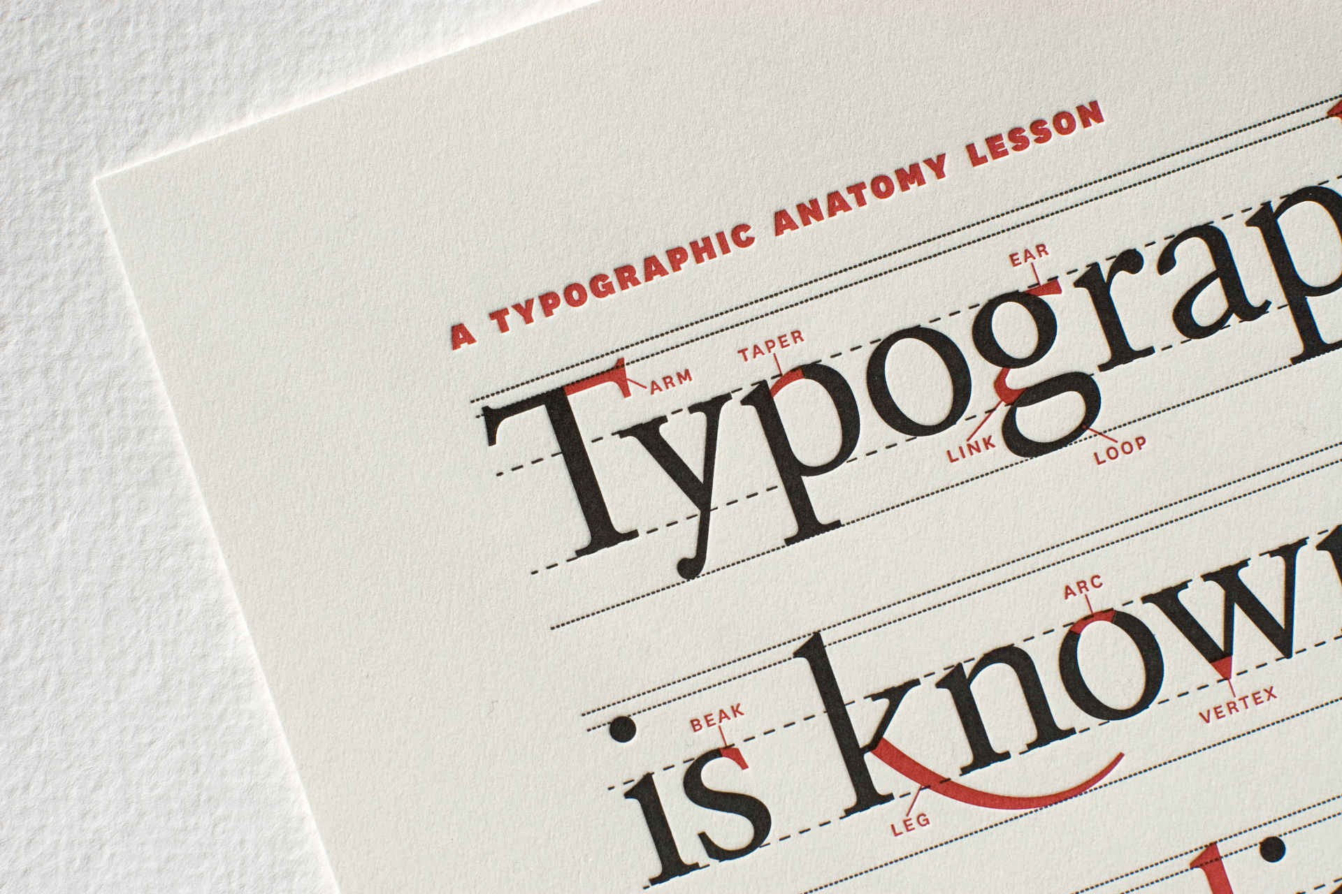 Best Online Typography Tools for Designers and Developers