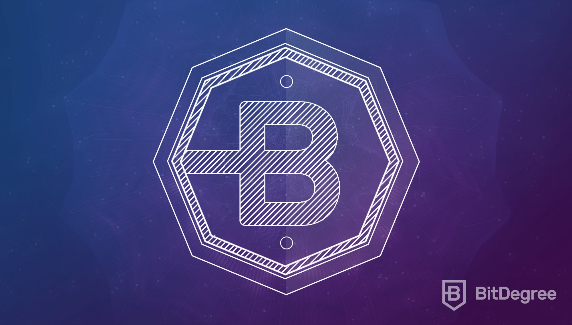 How Does Bitdegree See Its Business Model An Insiders View