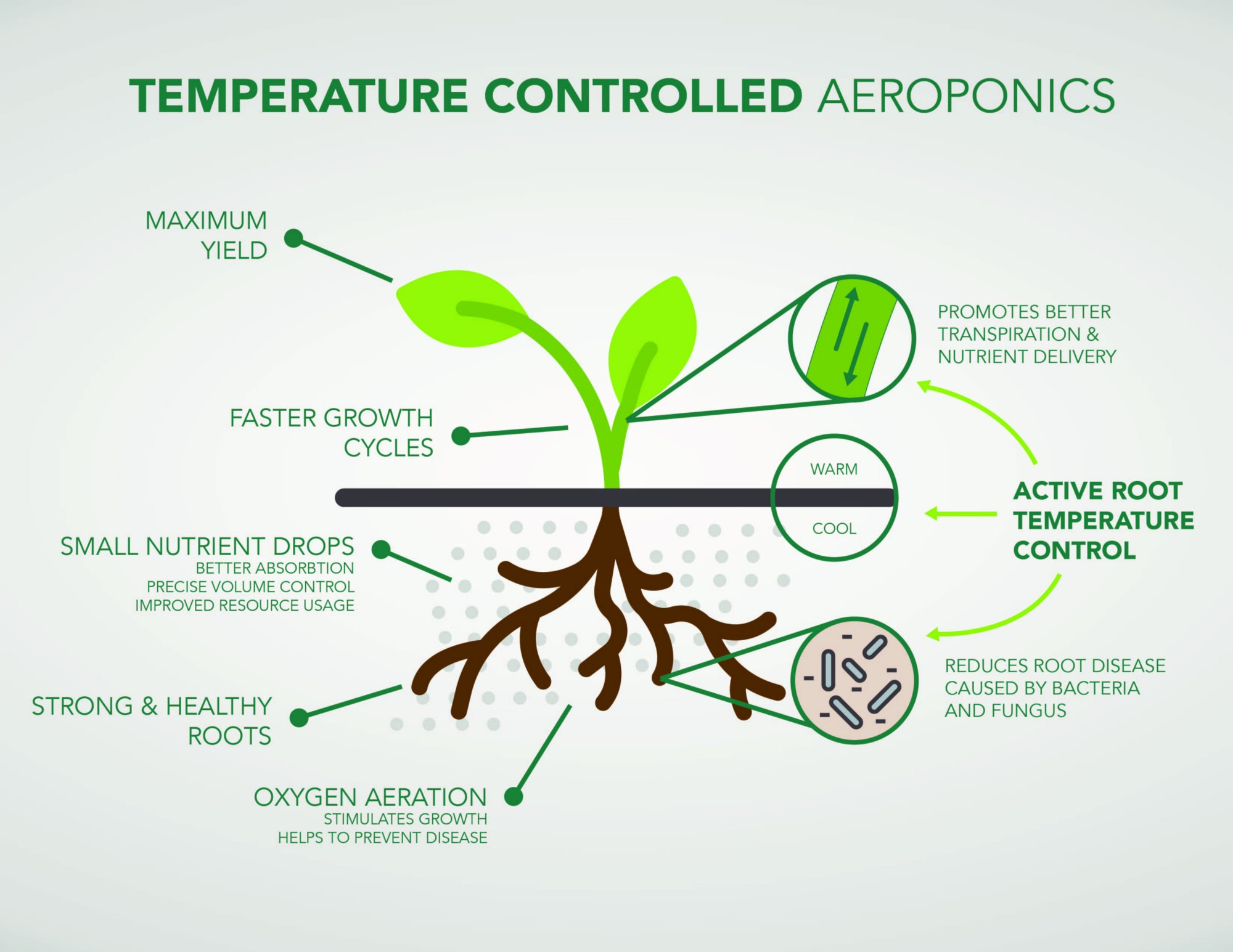 Image result for aeroponics