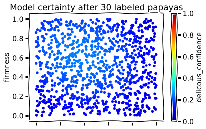 After 30 labels the active learner thinks most papayas are moderately to certainly yucky