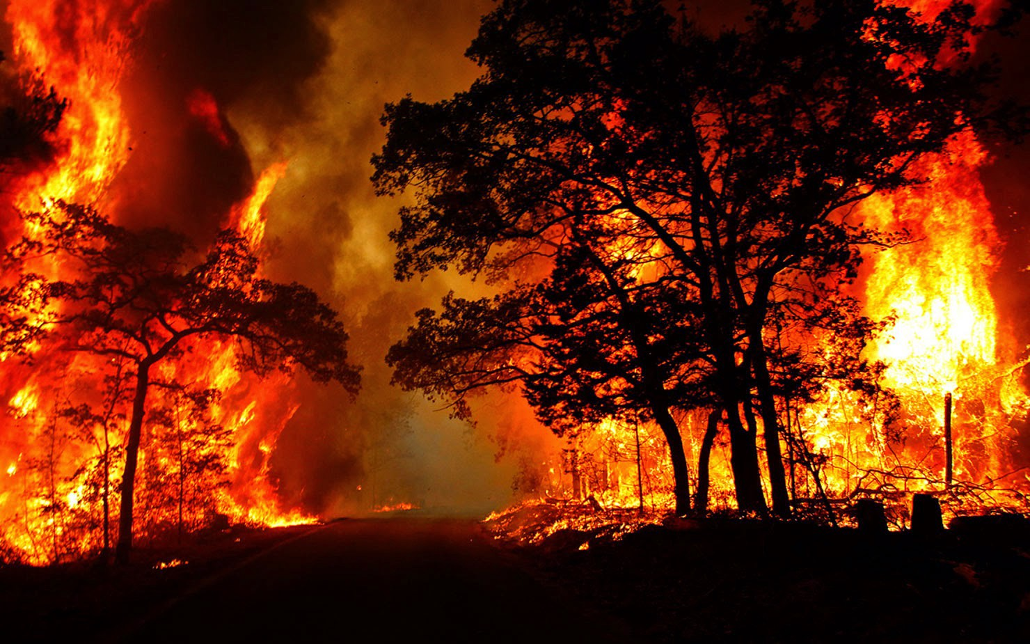 The Most Catastrophic Fires in History