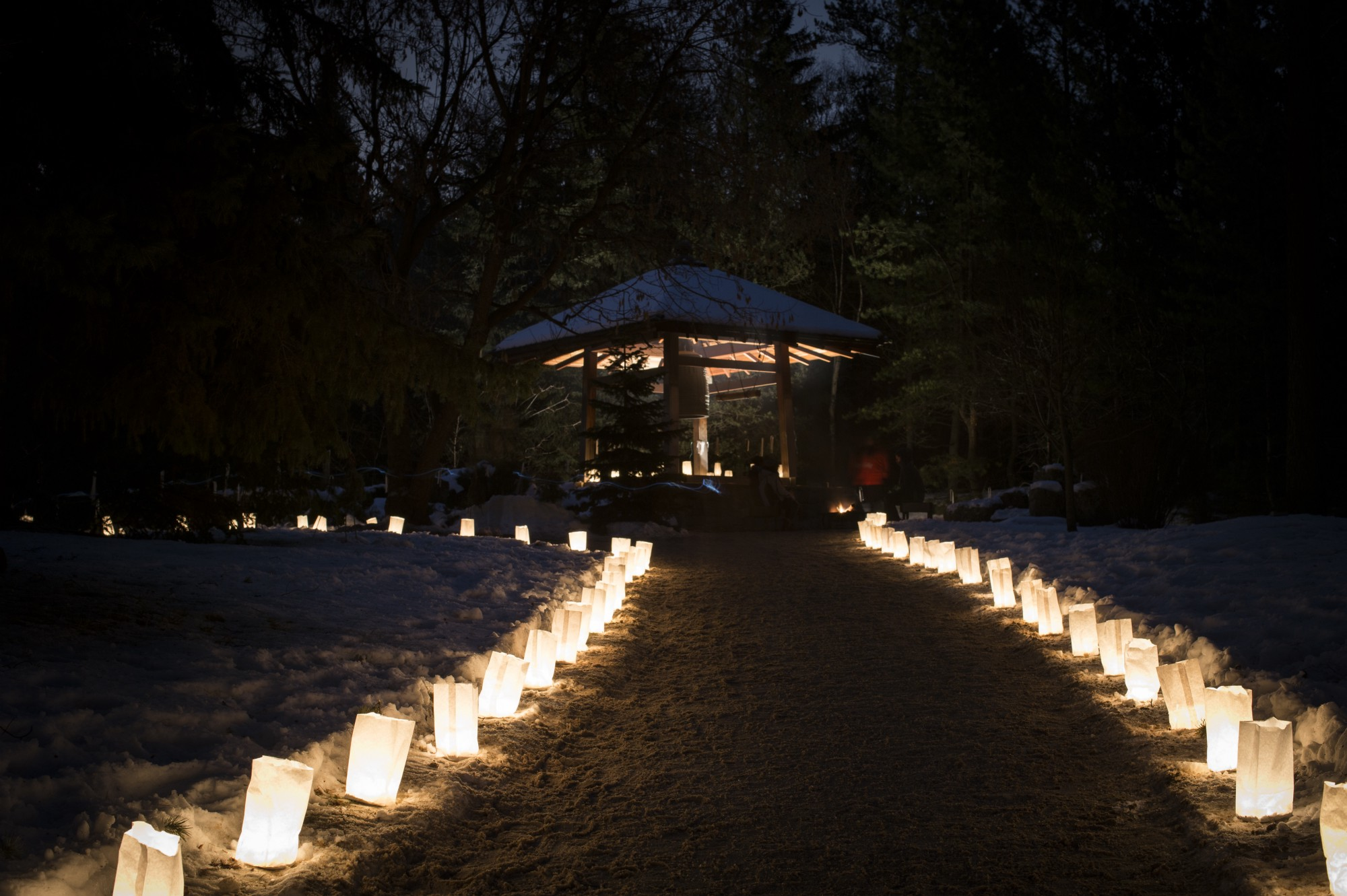 ... Of The University Of Alberta Botanic Gardens Were Aglow With Candle  Light As Part Of The Gardenu0027s Annual Luminaria Event. In Case You Missed  It, ...