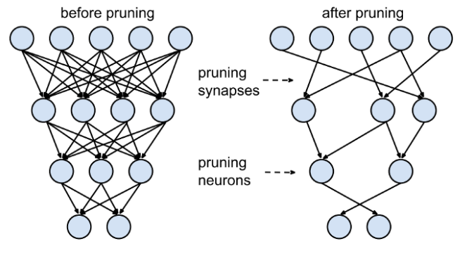 Fig: Synapses and neurons before and after pruning ([Learning both Weights and Connections for Efficient Neural Networks](https://arxiv.org/abs/1506.02626))