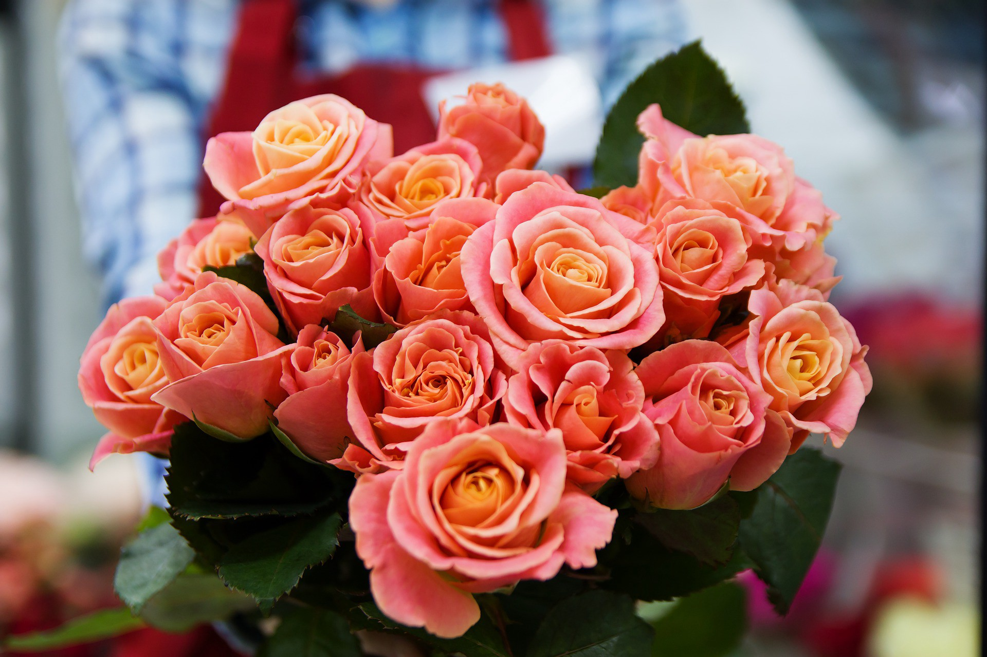 Ways to purchase best wholesale roses online james mcavoy medium different flowers are used to express emotions for decoration or at the time of worship the freshness fragrance and beauty of flowers izmirmasajfo