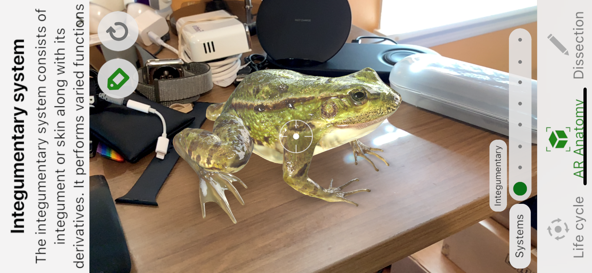 Apples New Iphones Are Simply Excellent Member Feature Stories Apple Lightning Cable Wiring Diagram With Froggipedia I Put This Life Like Frog On My Desk Image Lance Ulanoff