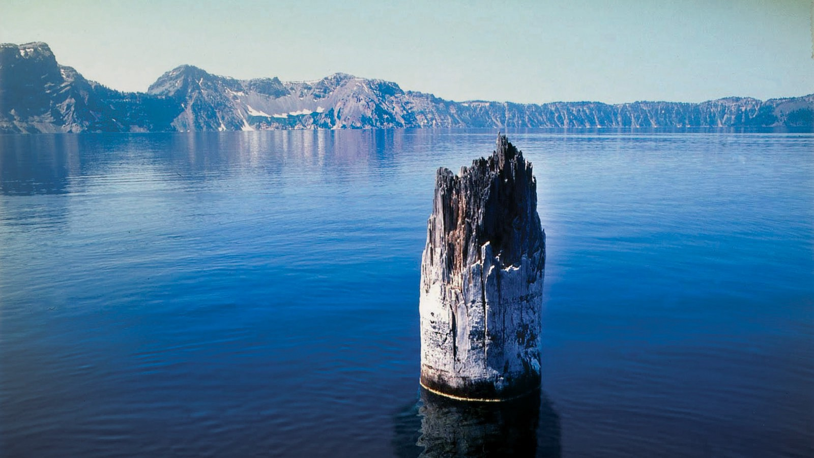 This ghost tree has been floating vertically in Crater Lake for more than 100 years