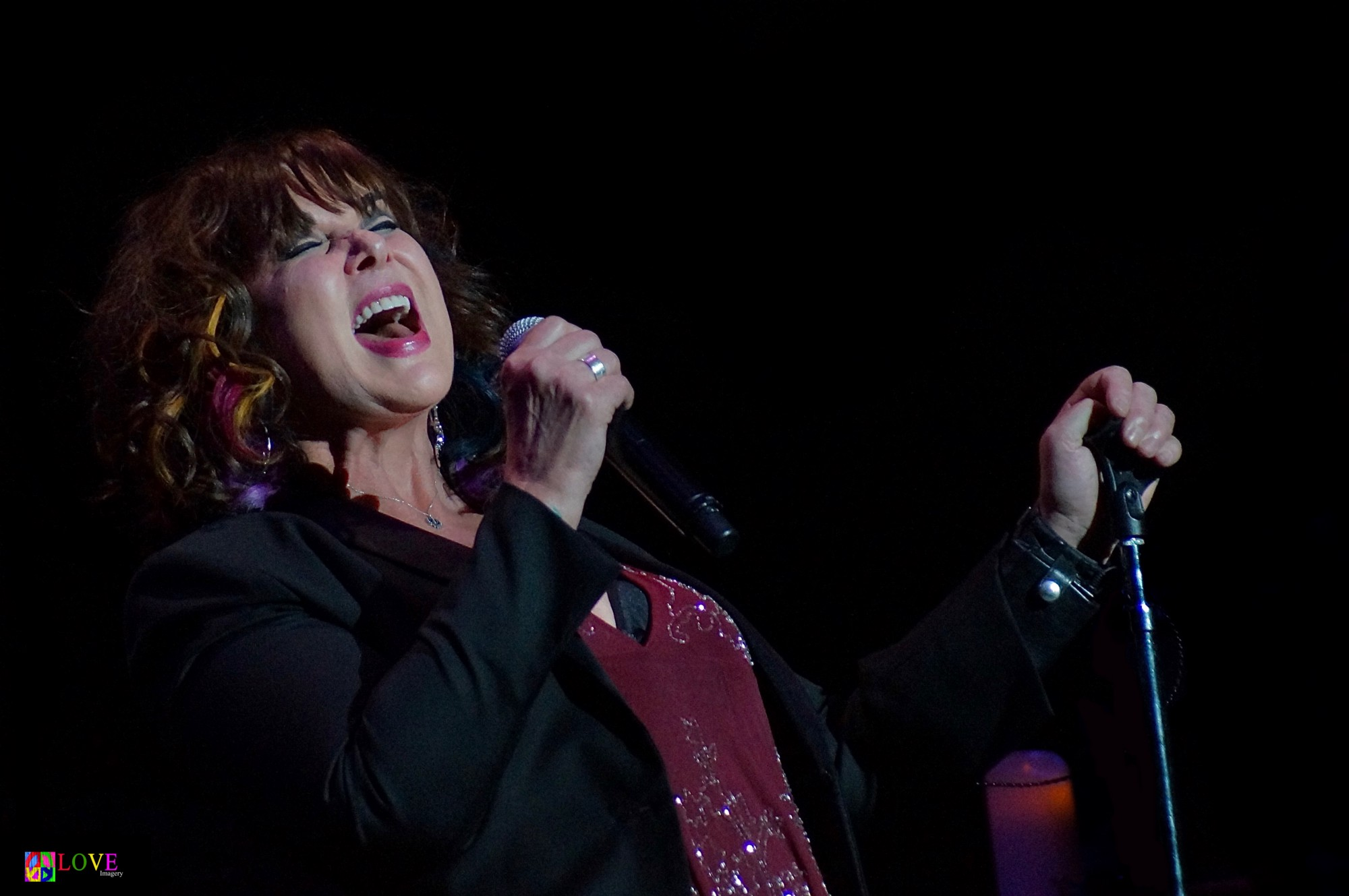 """Nothing pares to Her "" Ann Wilson of Heart LIVE at BergenPAC"