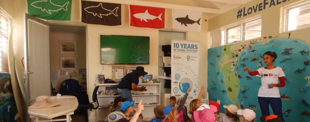 The Shark information centre at Muizenberg beach © Save Our Seas Foundation.