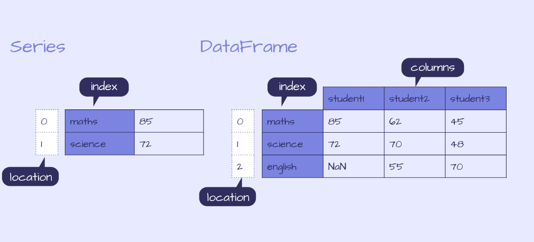 Example of a pandas Series and DataFrame
