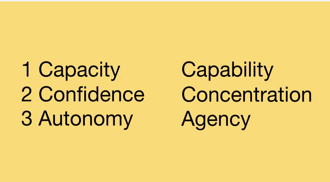 Slide with 3 lines and 2 columns: capacity/capability, confidence/concentration and autonomy/agancy